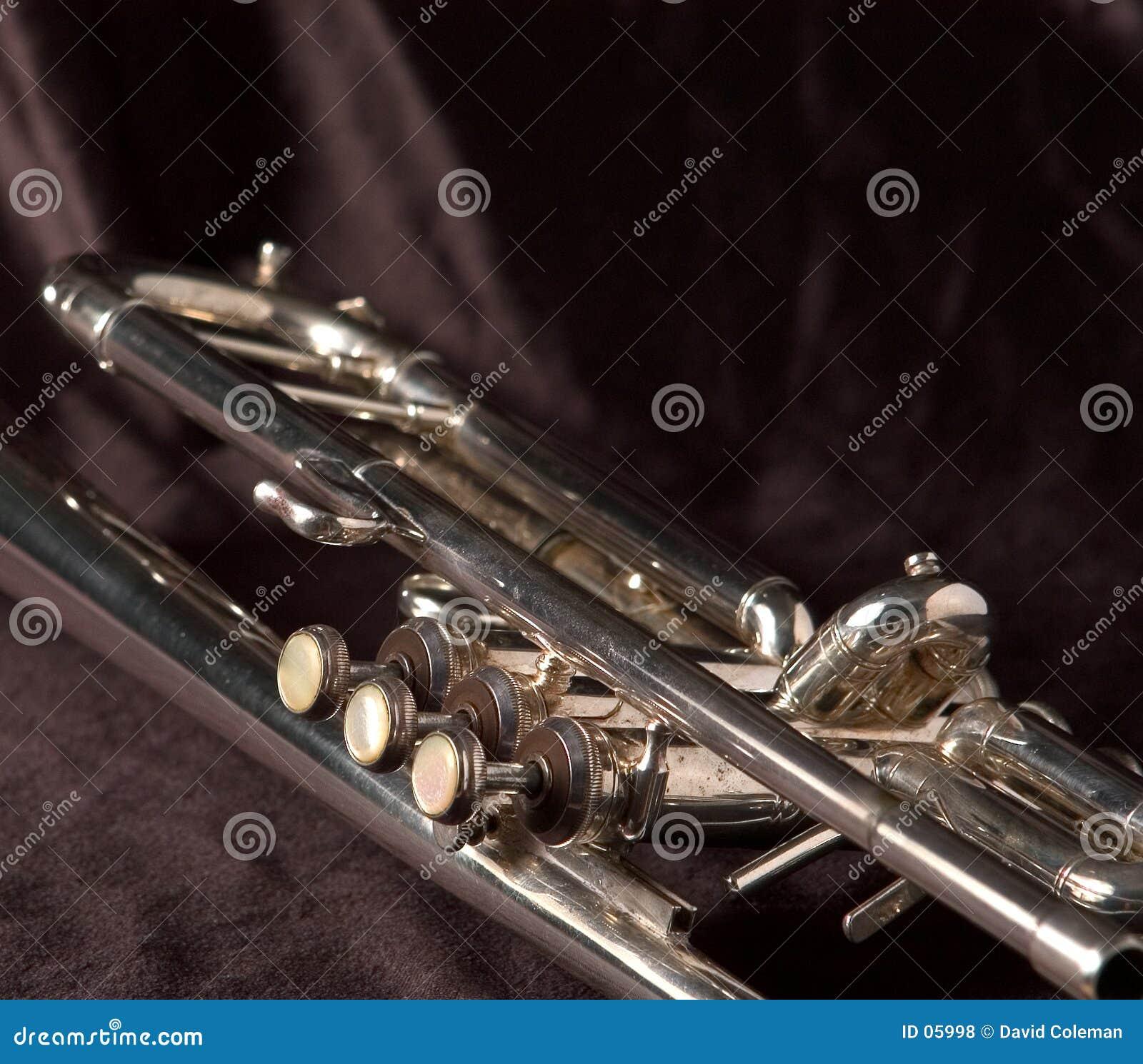 Trumpet valves on black