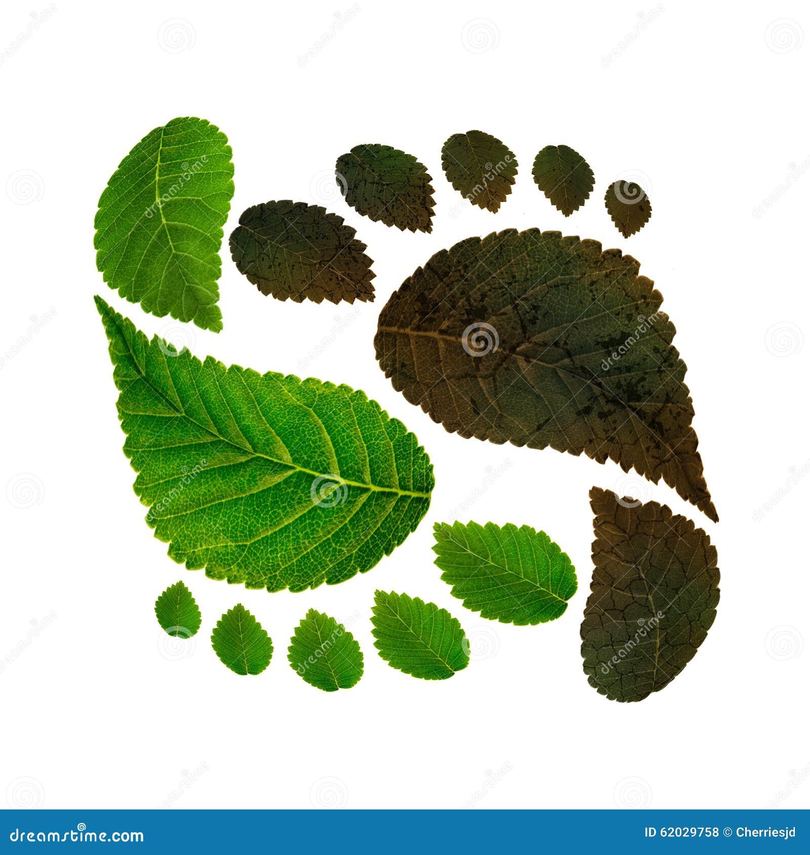 Trwałość ekologia przeciw zanieczyszczeniu środowiska