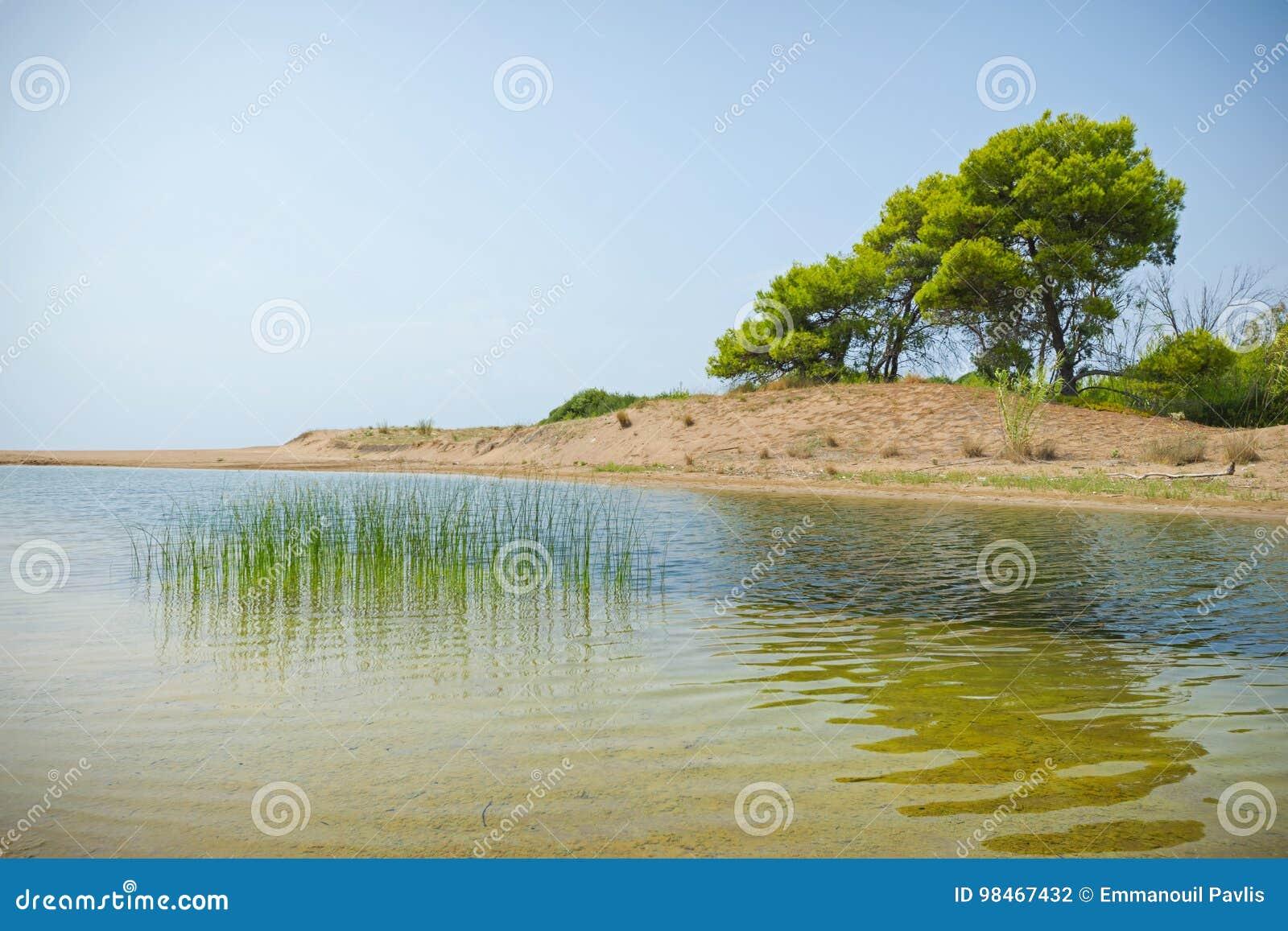 obrazy tryskać morze