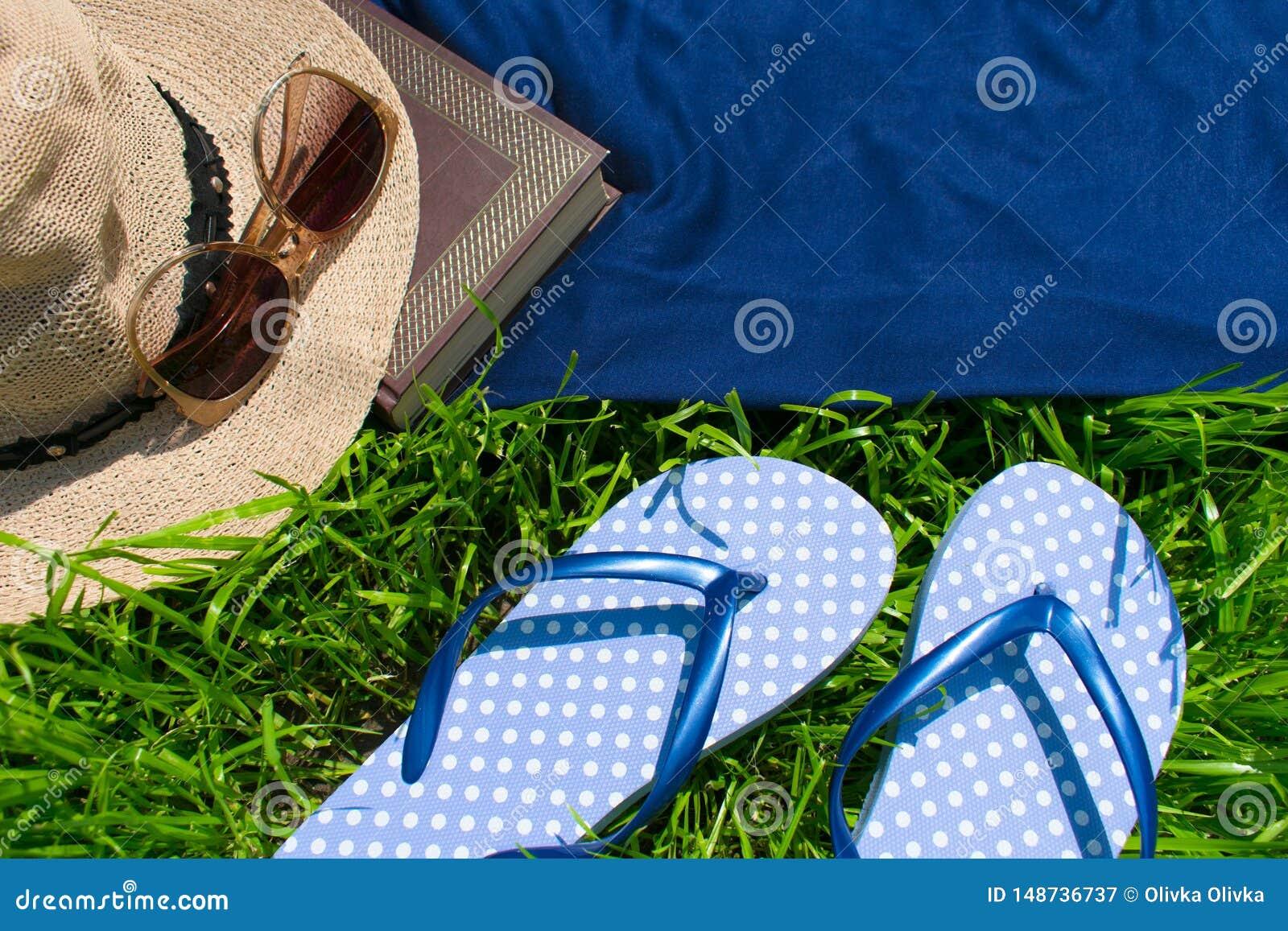 Trzepnięcie klapy, lato kapelusz, książka i okulary przeciwsłoneczni na zielonej trawie,