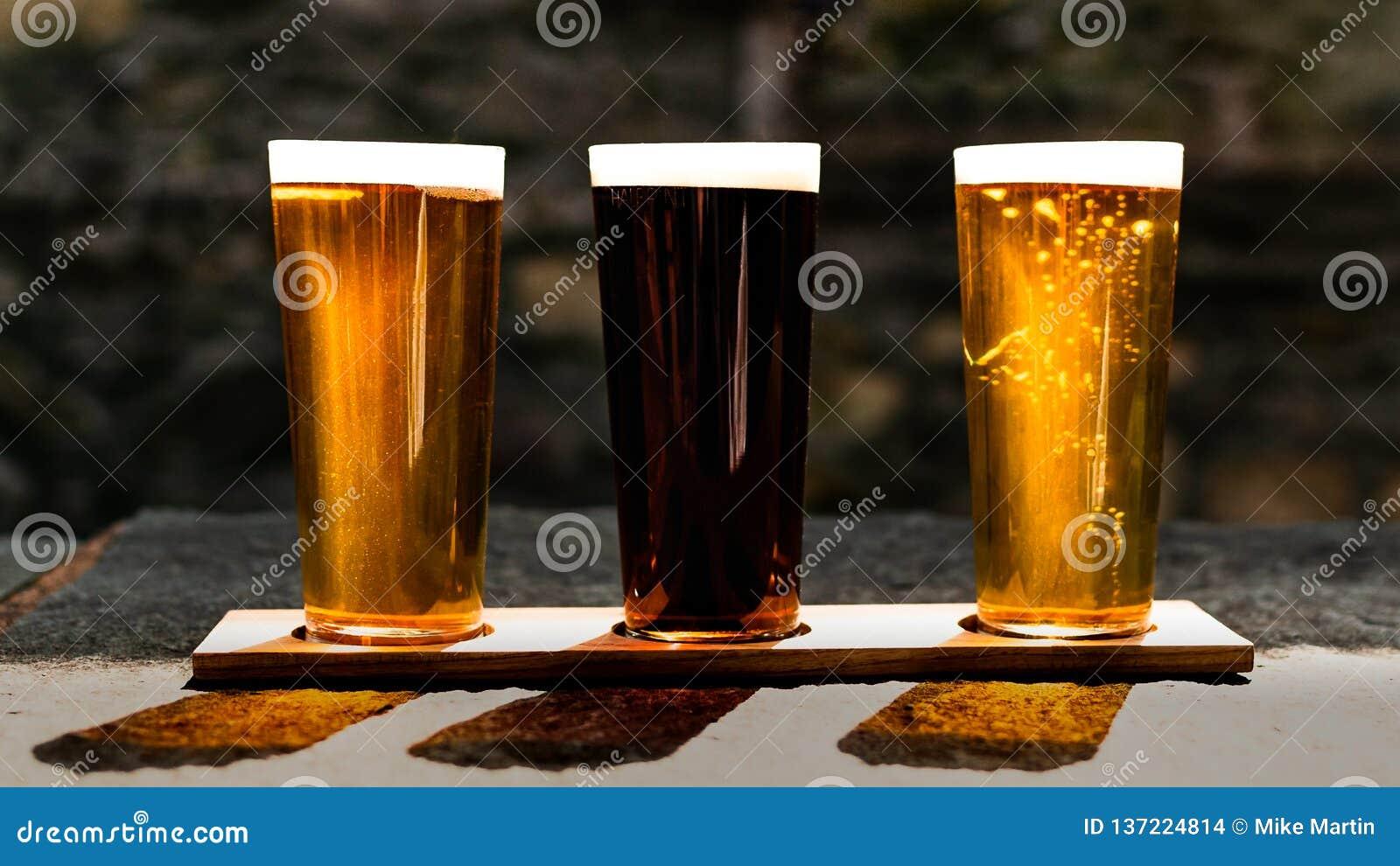 Trzy piwa w słońcu