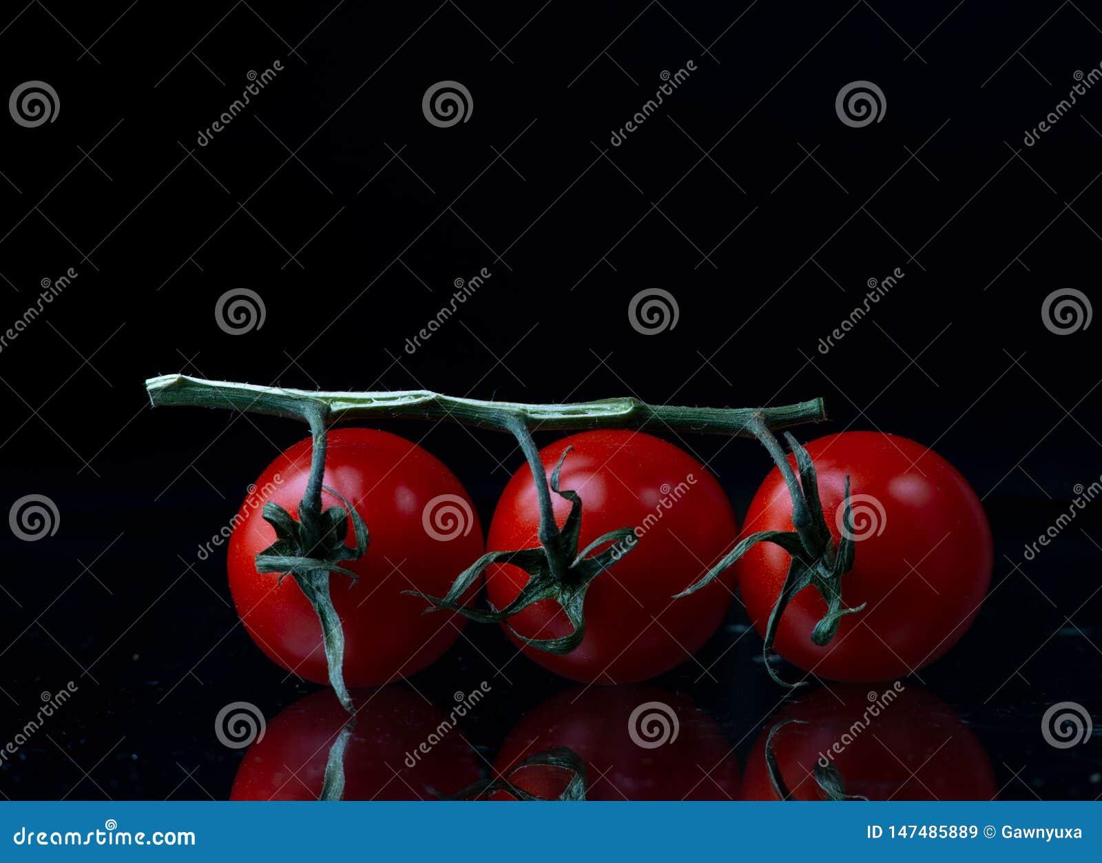 Trzy pomidoru na gałąź