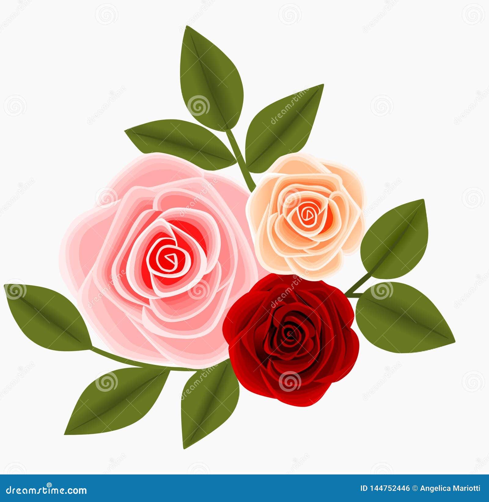 Trzy róż i liści dekoracji