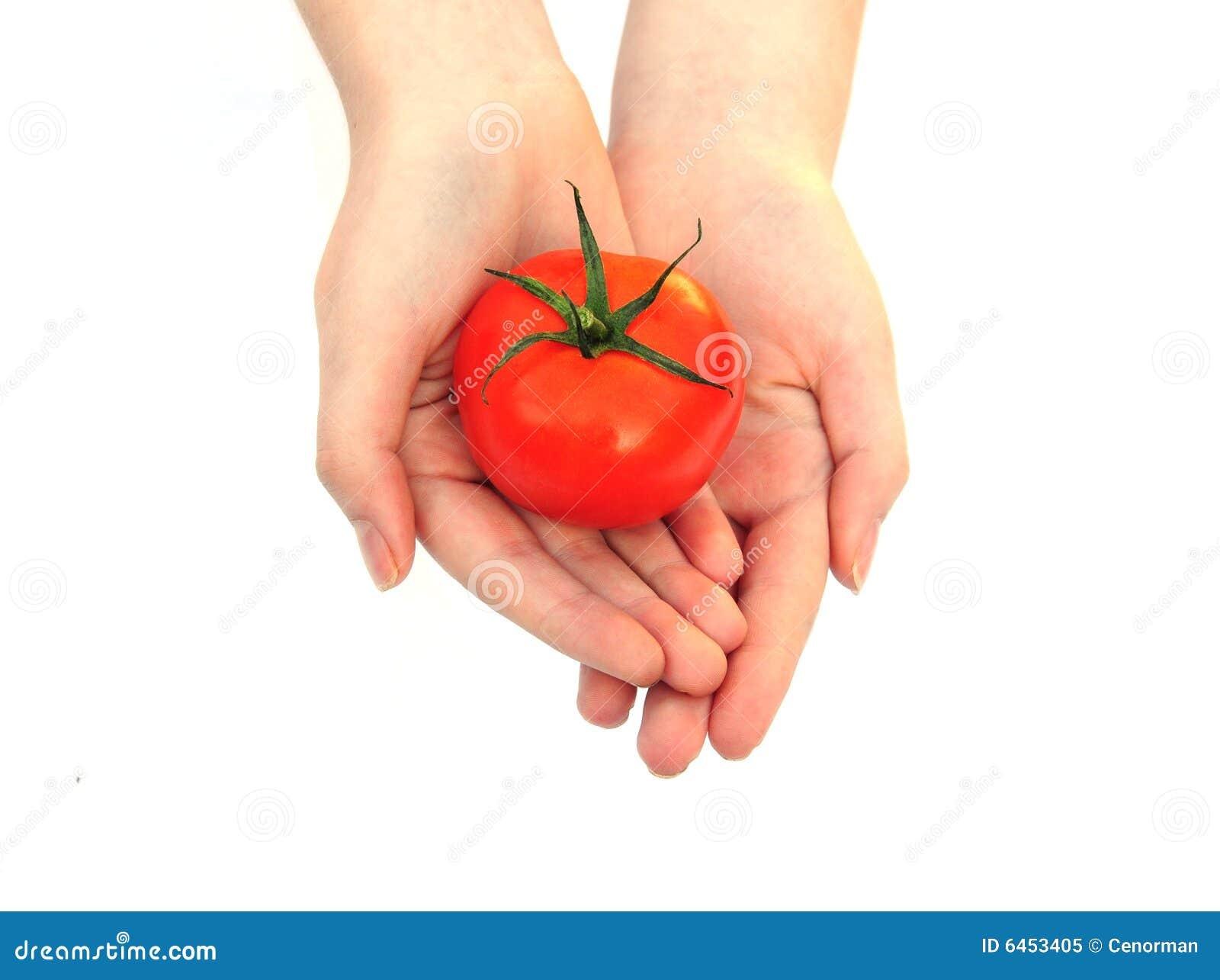 Trzymaj ręce pomidora