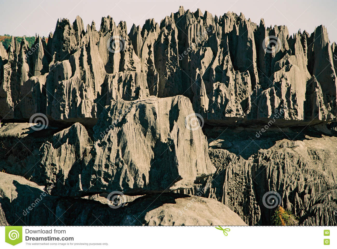 Download Tsingy Madagascar stock photo. Image of forests, viaferrata - 72920334