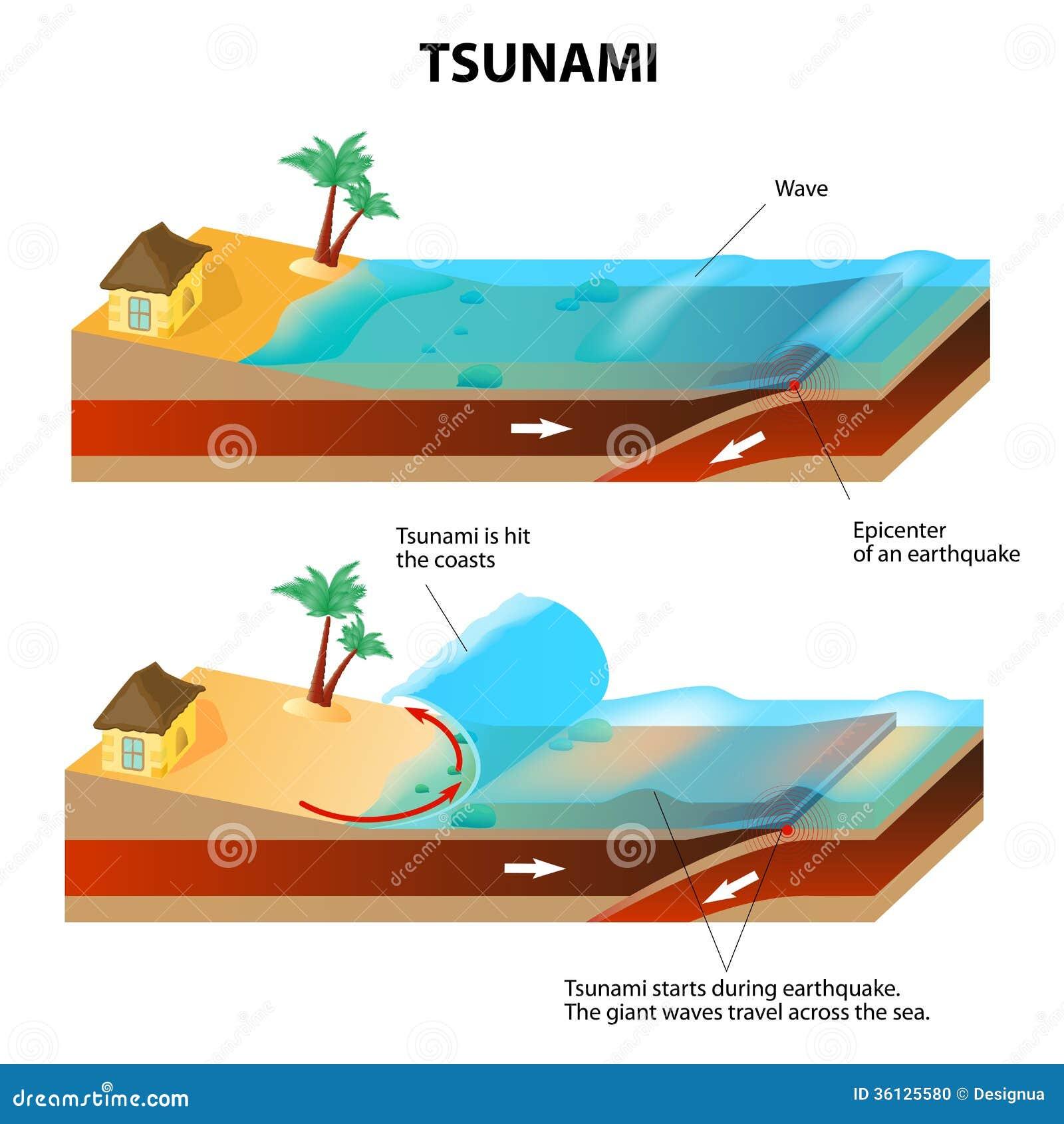 Tsunami And Ear... Seismograph Diagram