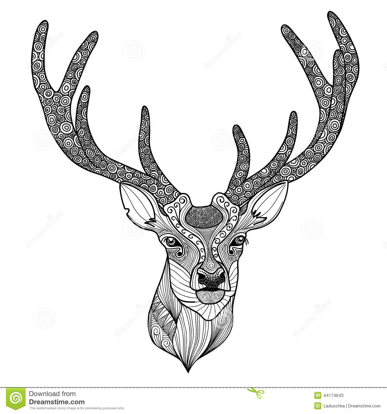 T te model e de cerfs communs illustration de vecteur - Dessin de tete de cerf ...