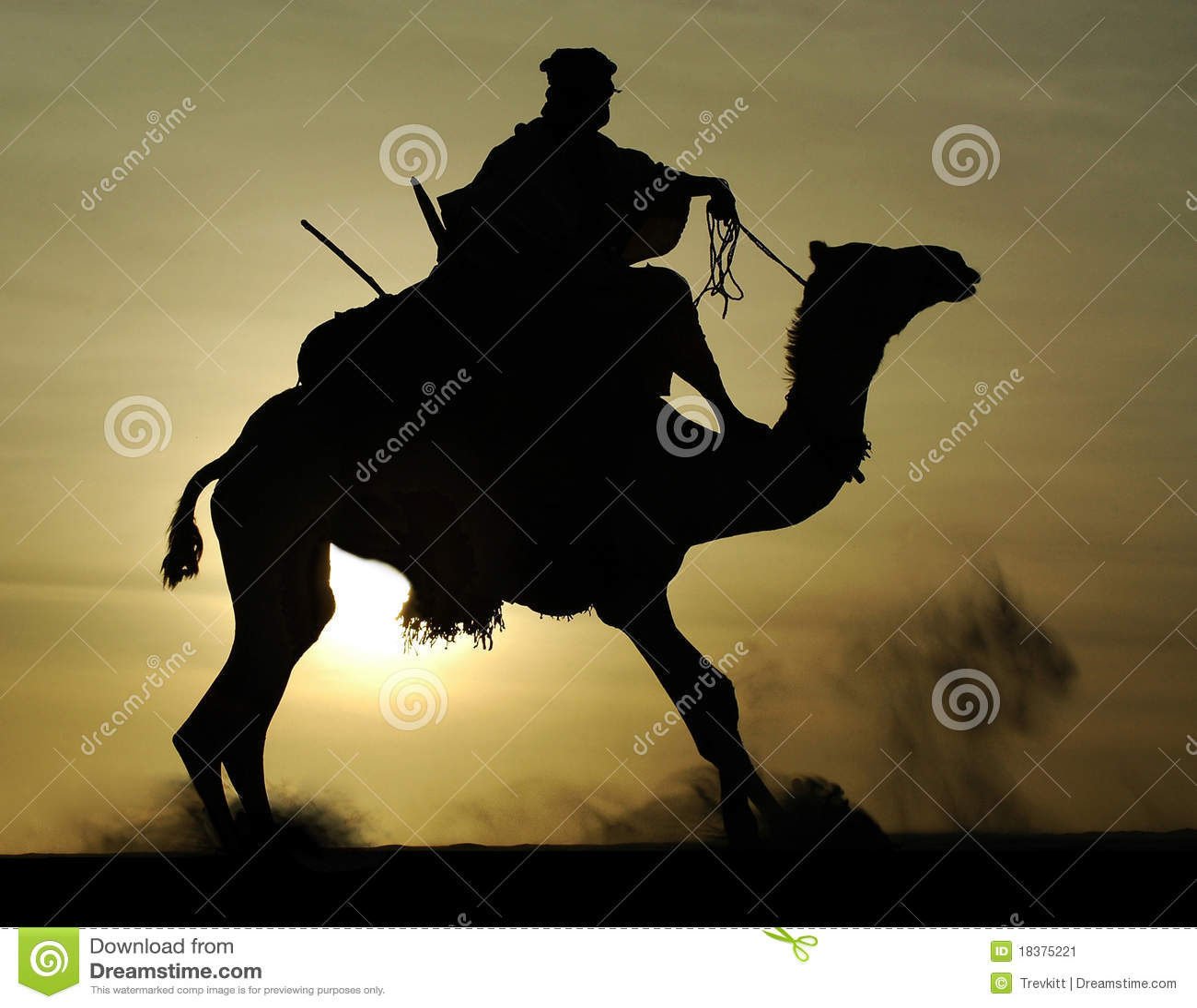 Tuareg силуэта всадника верблюда поднимая