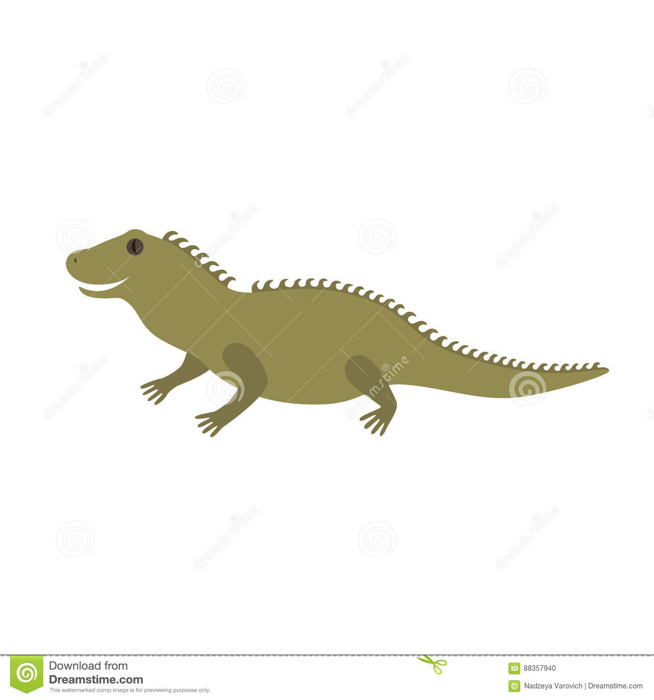 Tuatara of New Zealand
