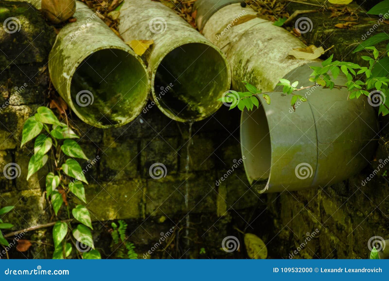 Tubulações do esgoto situadas na floresta na ilha tropical