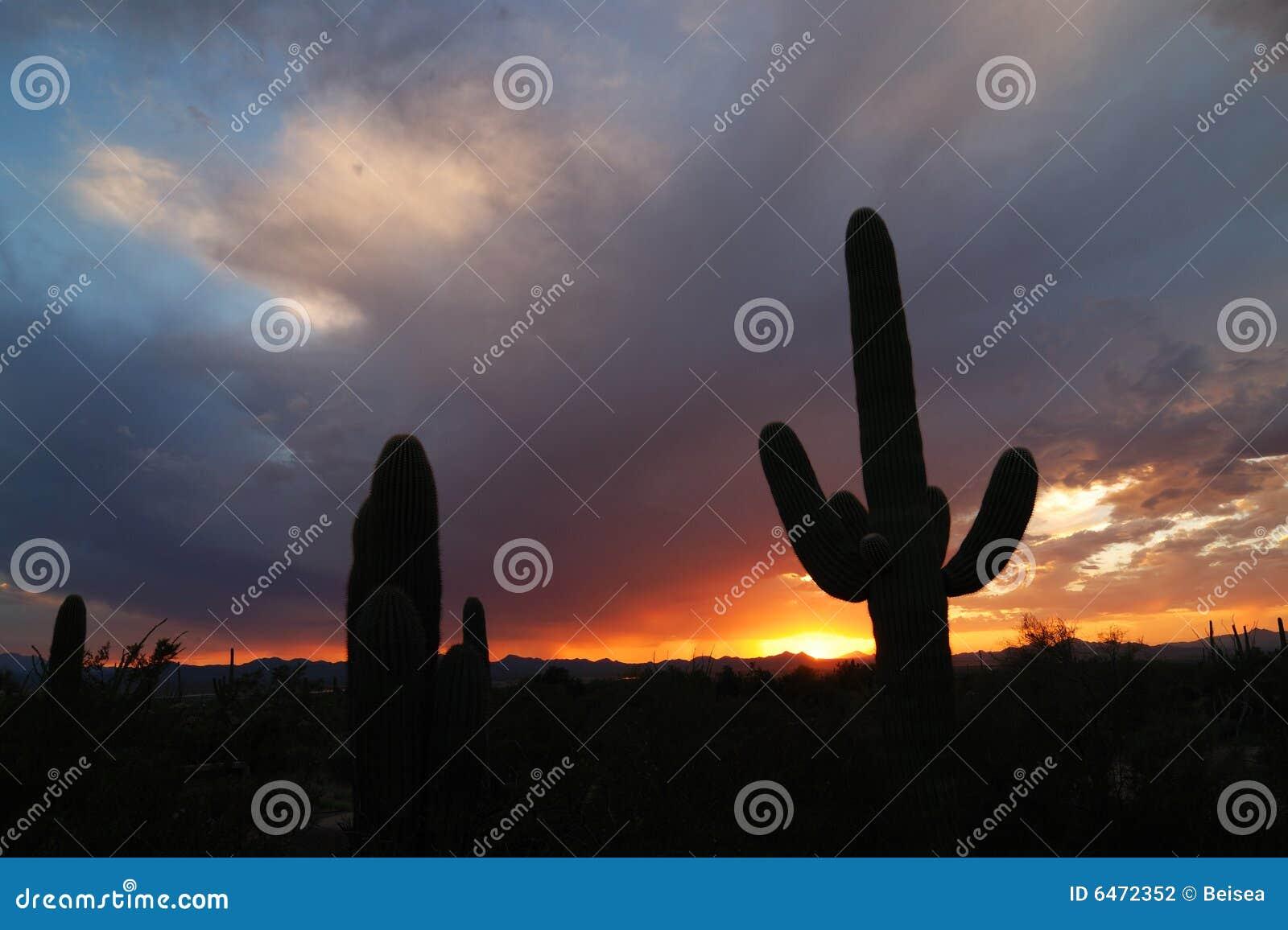 Tucson, zachód słońca