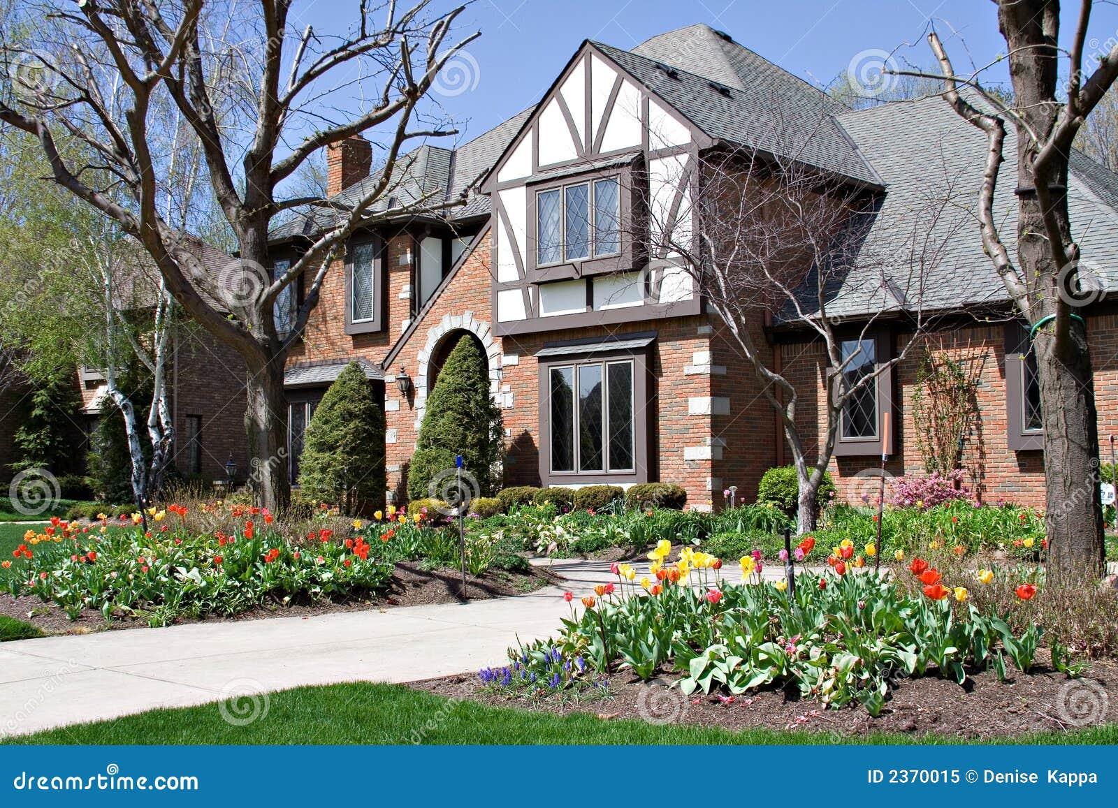 Tudor et tulipes