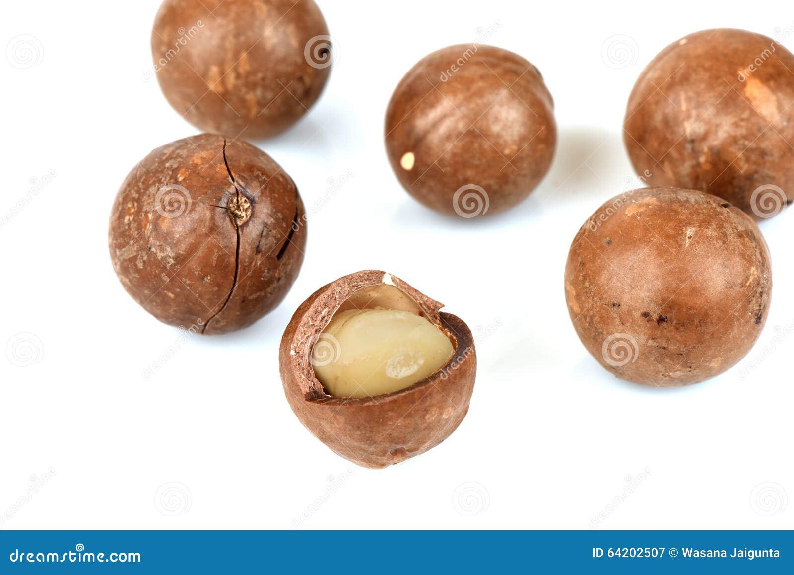 Tuercas de macadamia en el fondo blanco