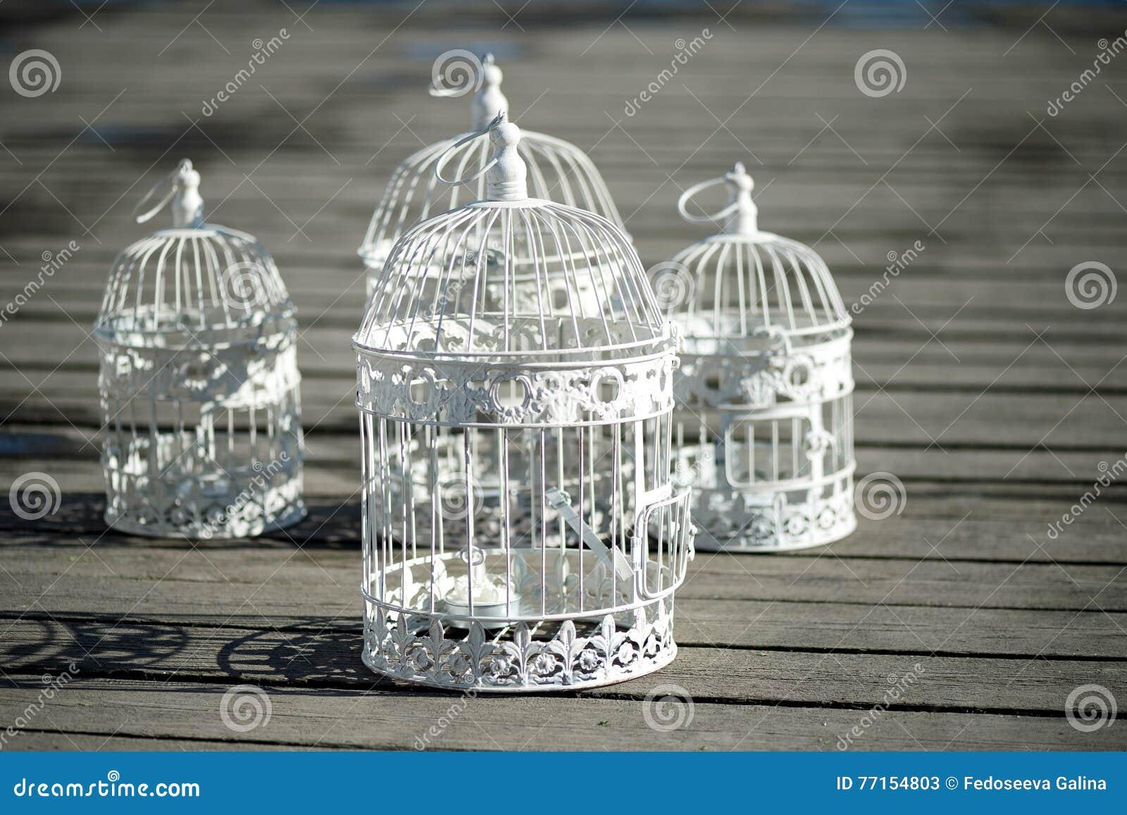 Tuiles décoratives sur le decking, chutes l ombre Décoration romantique