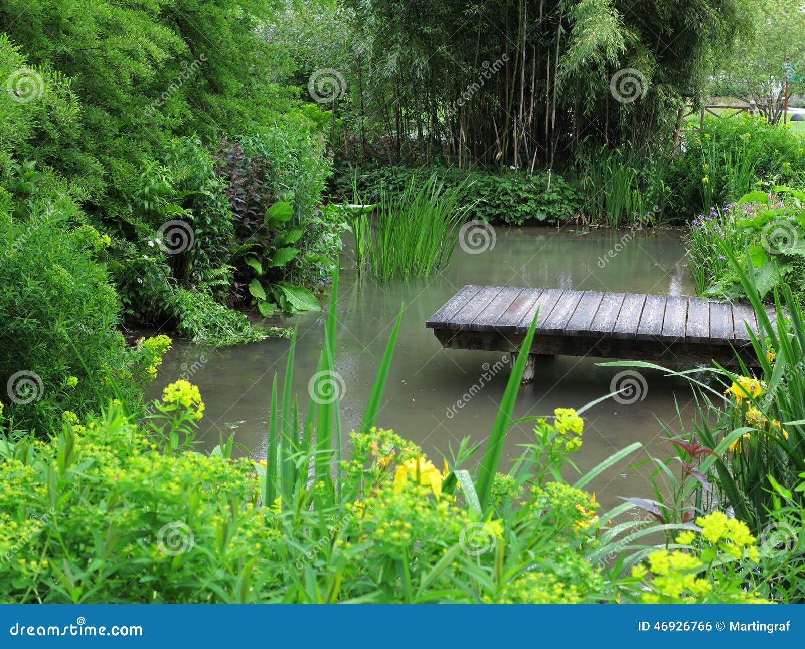 Tuin het modelleren vijver stock foto afbeelding 46926766 - Foto van tuin vijver ...