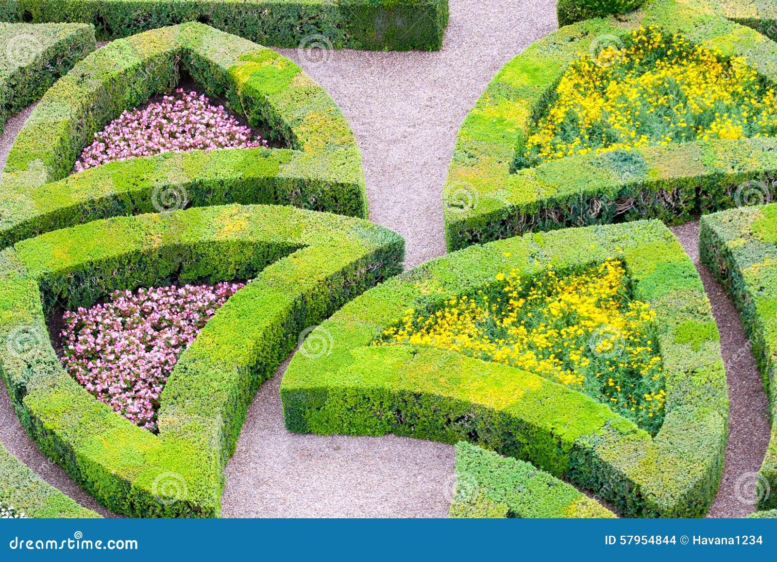 Tuin Hagen Soorten : Tuin met vele verschillende soorten bukshout stock foto