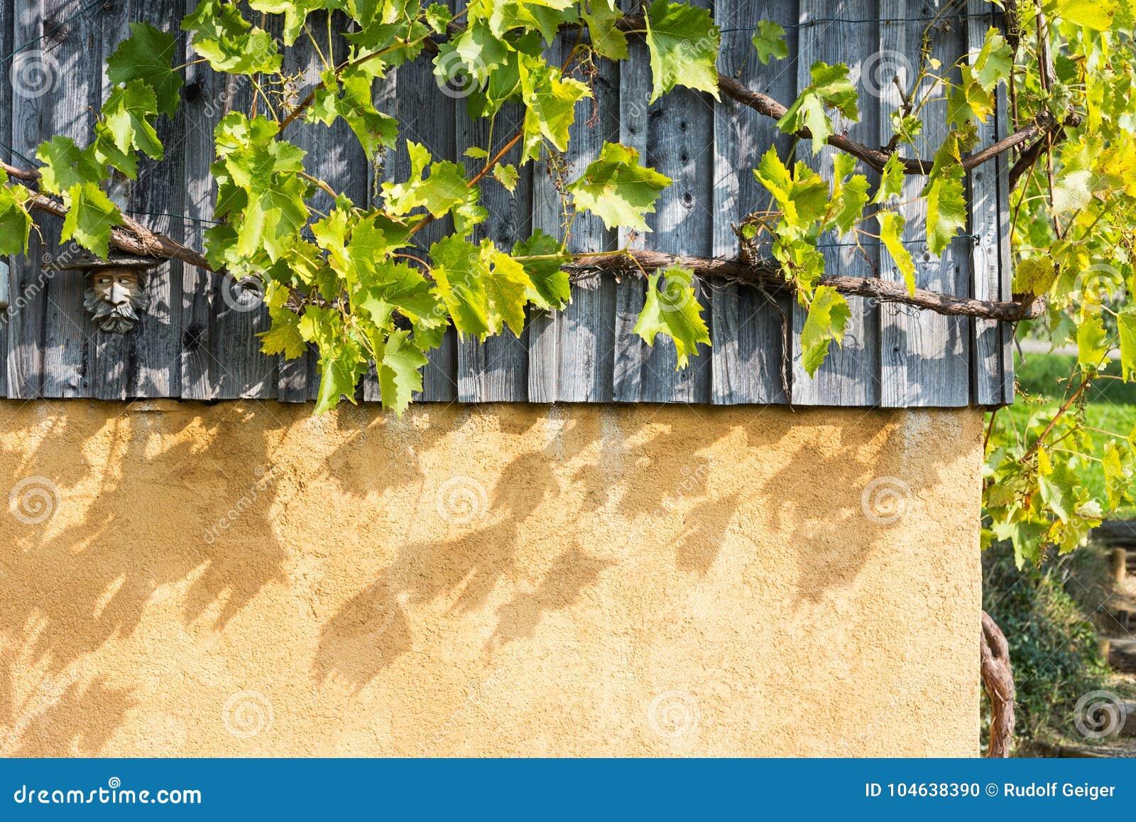 Download Tuin Van Het Zuiden De Duitse Plattelandshuisje Stock Foto - Afbeelding bestaande uit gebladerte, installatie: 104638390