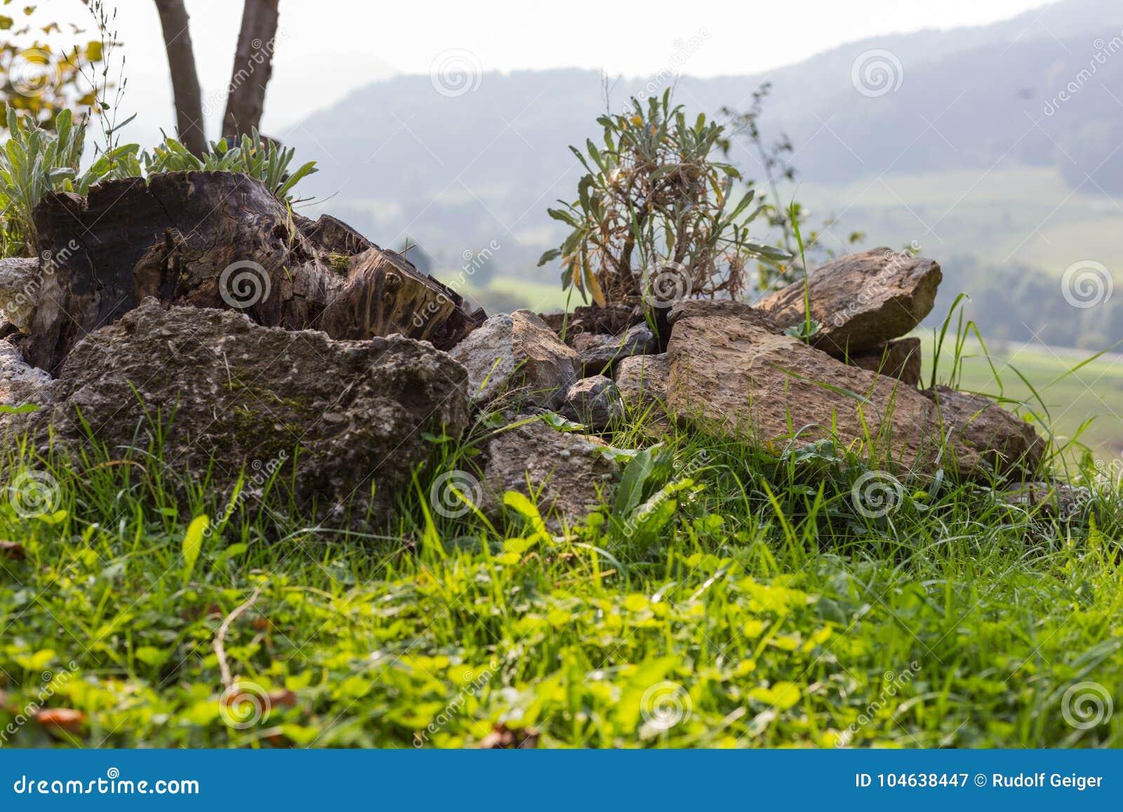Download Tuin Van Het Zuiden De Duitse Plattelandshuisje Stock Afbeelding - Afbeelding bestaande uit steen, overzees: 104638447