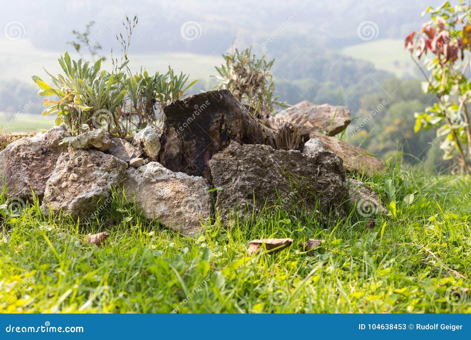 Download Tuin Van Het Zuiden De Duitse Plattelandshuisje Stock Afbeelding - Afbeelding bestaande uit landbouw, droog: 104638453