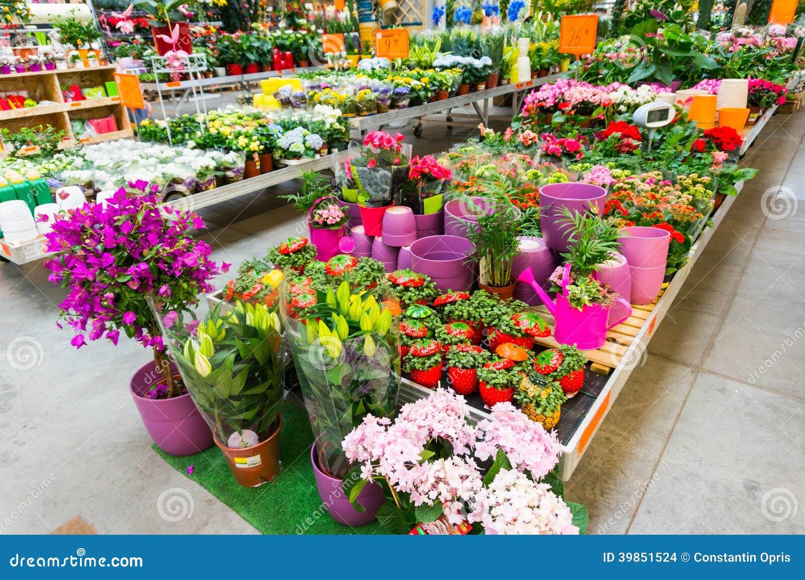 Tuincentrum stock foto afbeelding 39851524 - Huisverbetering m ...