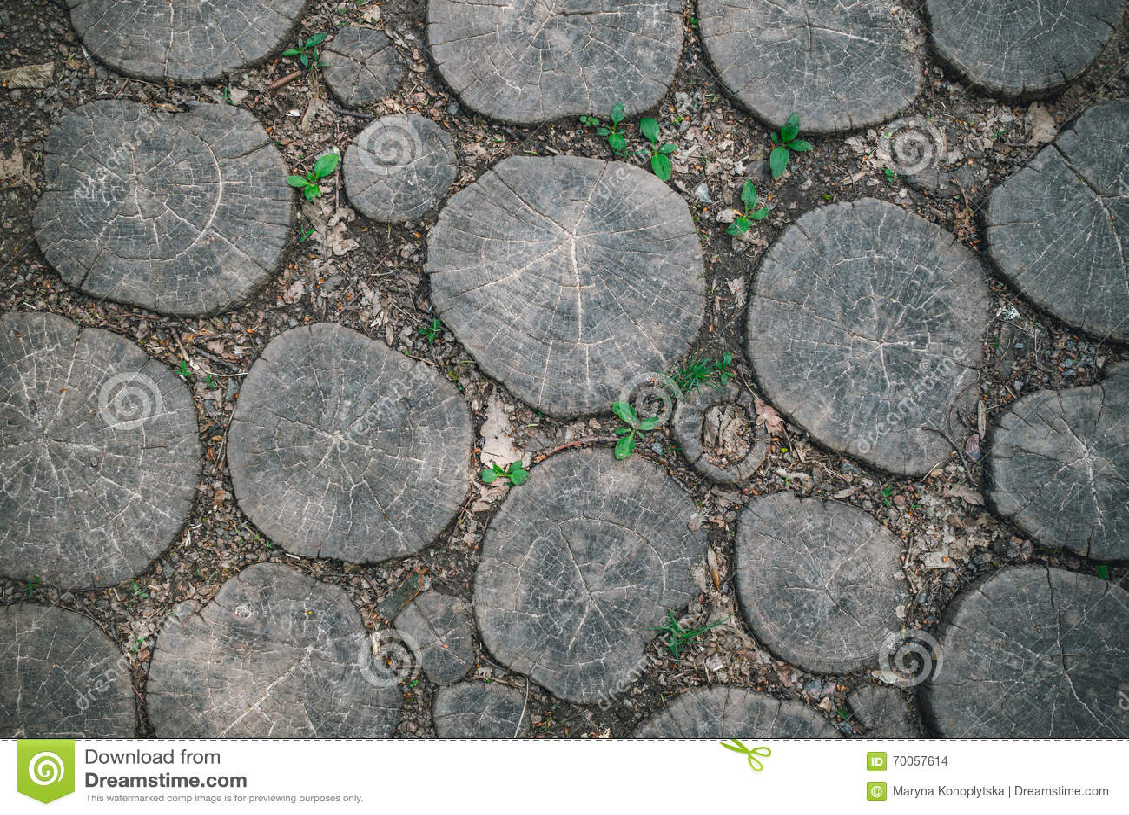 Tuinweg met eiken planken wordt bedekt die stock foto afbeelding