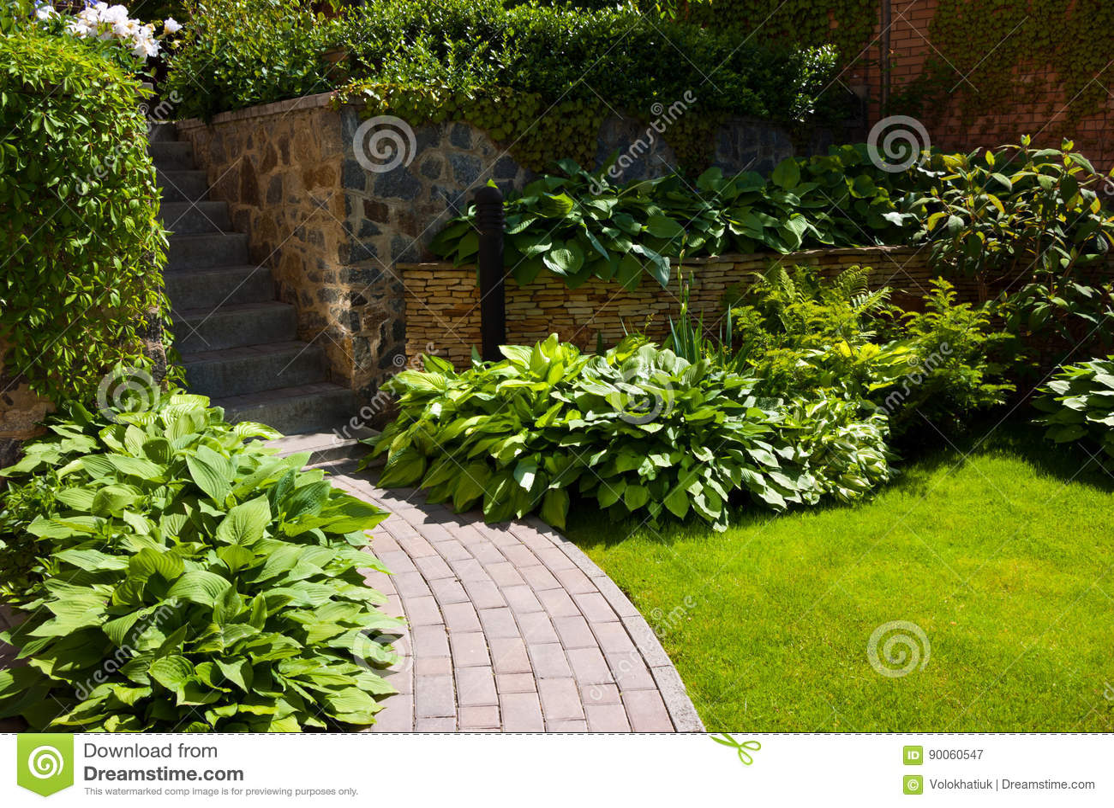 Tuinweg met gras