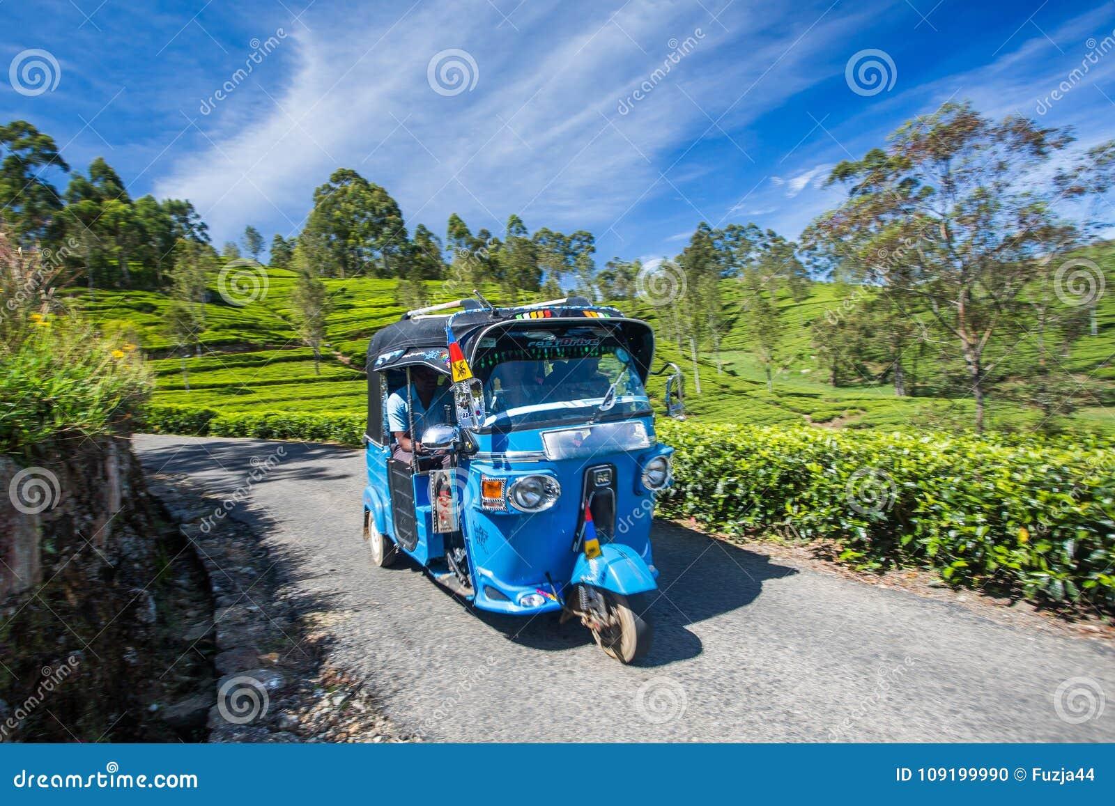 Tuk Tuk в плантациях поля чая, Шри-Ланка