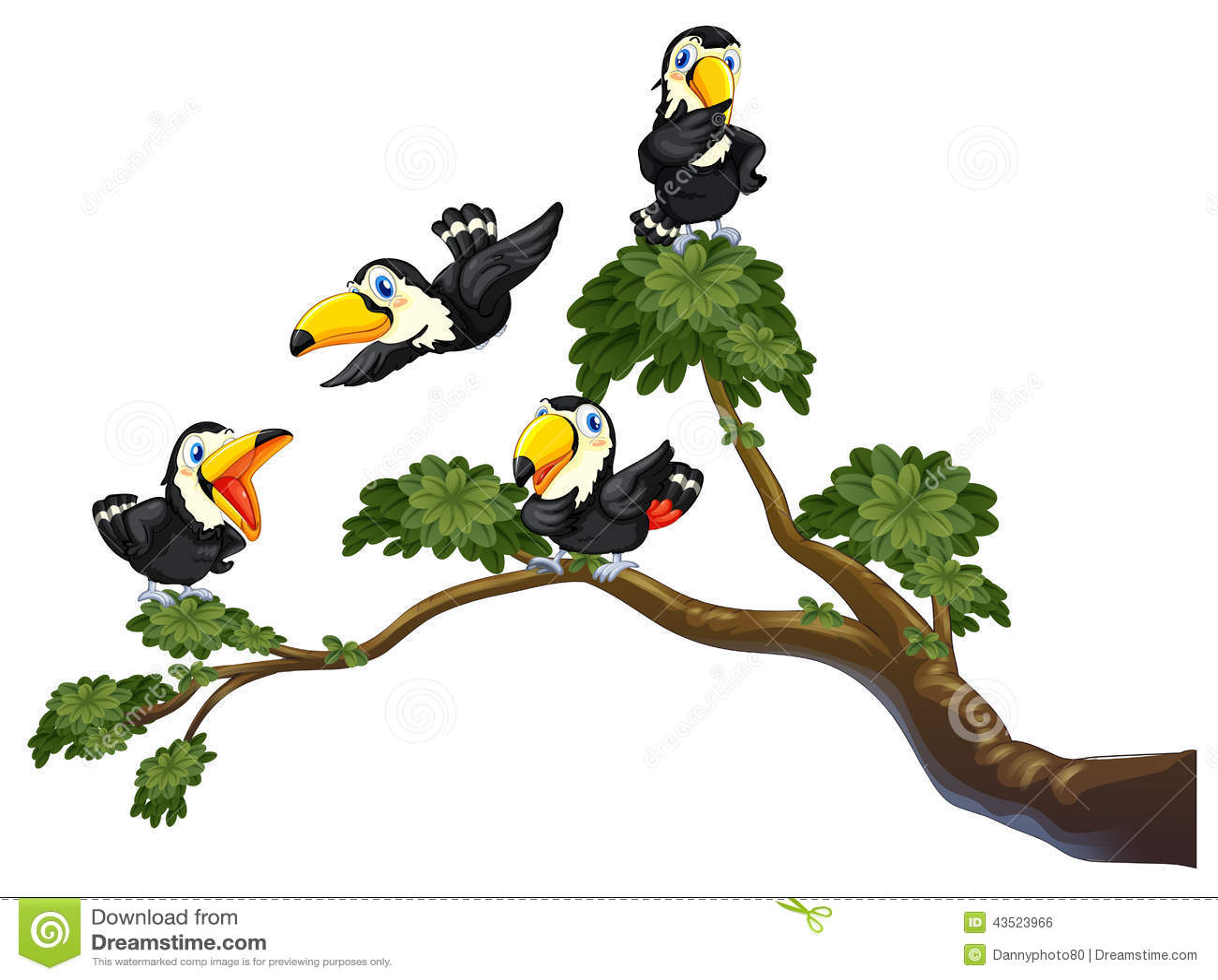 Tukan und Baum