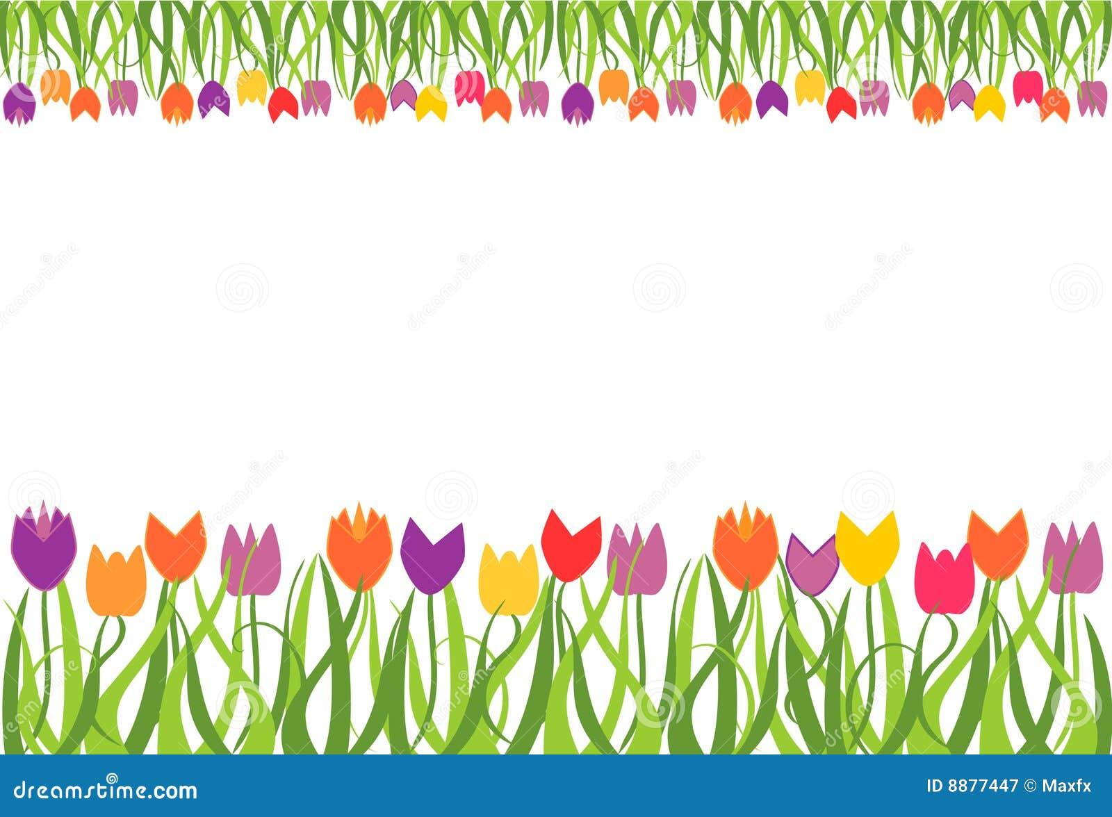 Tulip border frame stock vector. Image of fresh, vector ... Tulips Border Clipart