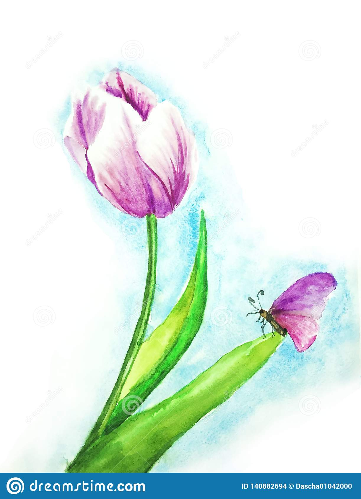 Tulip and butterfly watercolor illustration