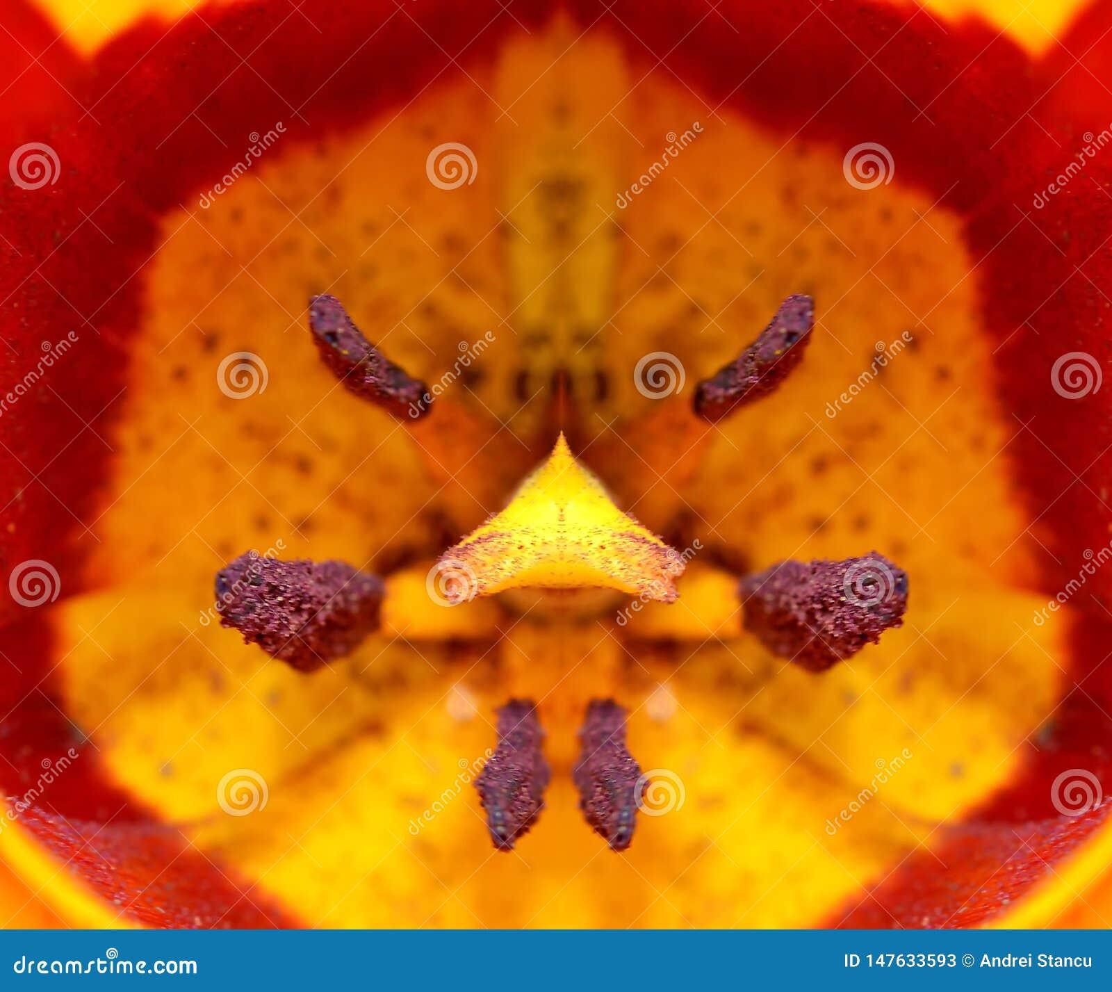 Tulip Closeup Detail