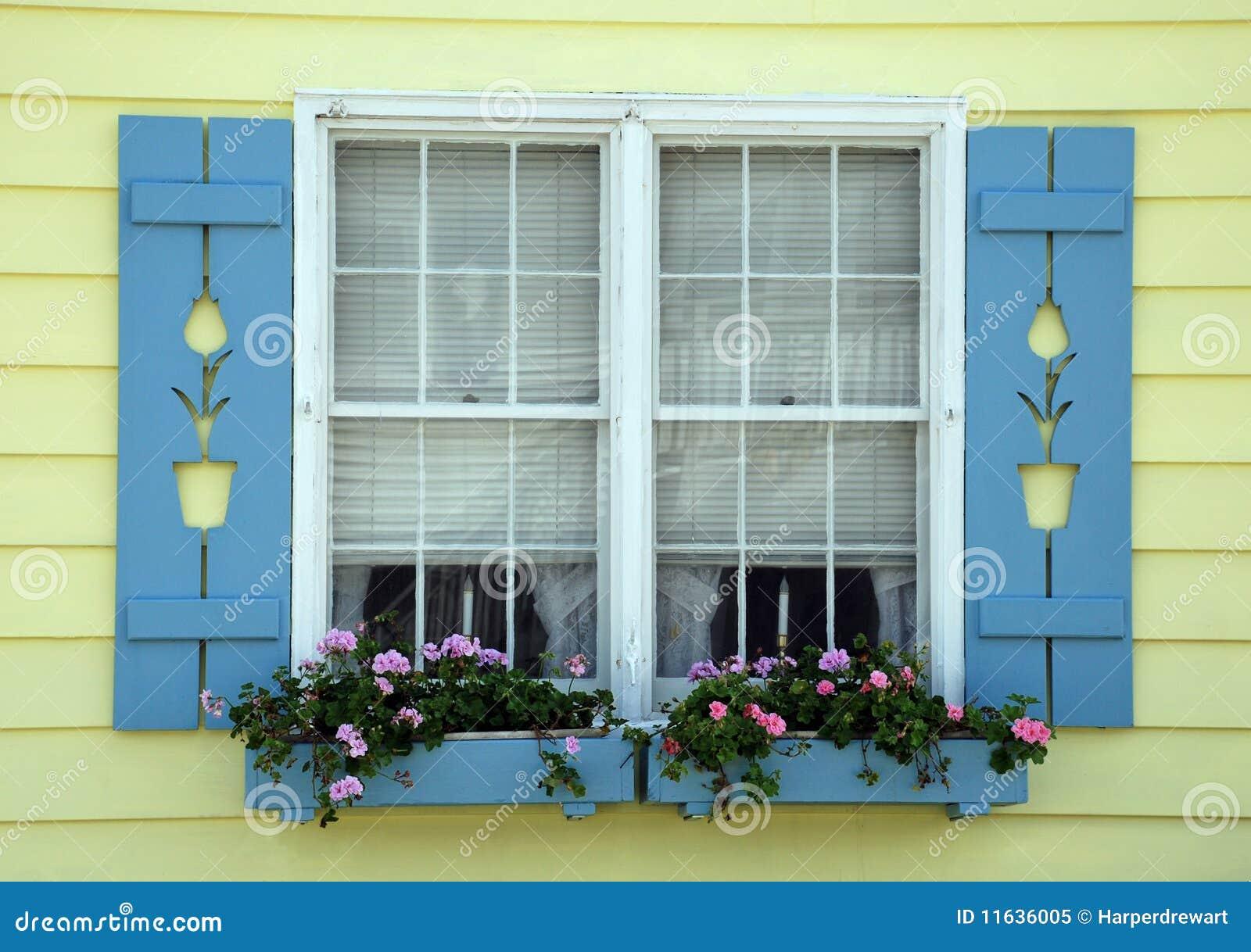 Tulip cottage window royalty free stock photo image 11636005