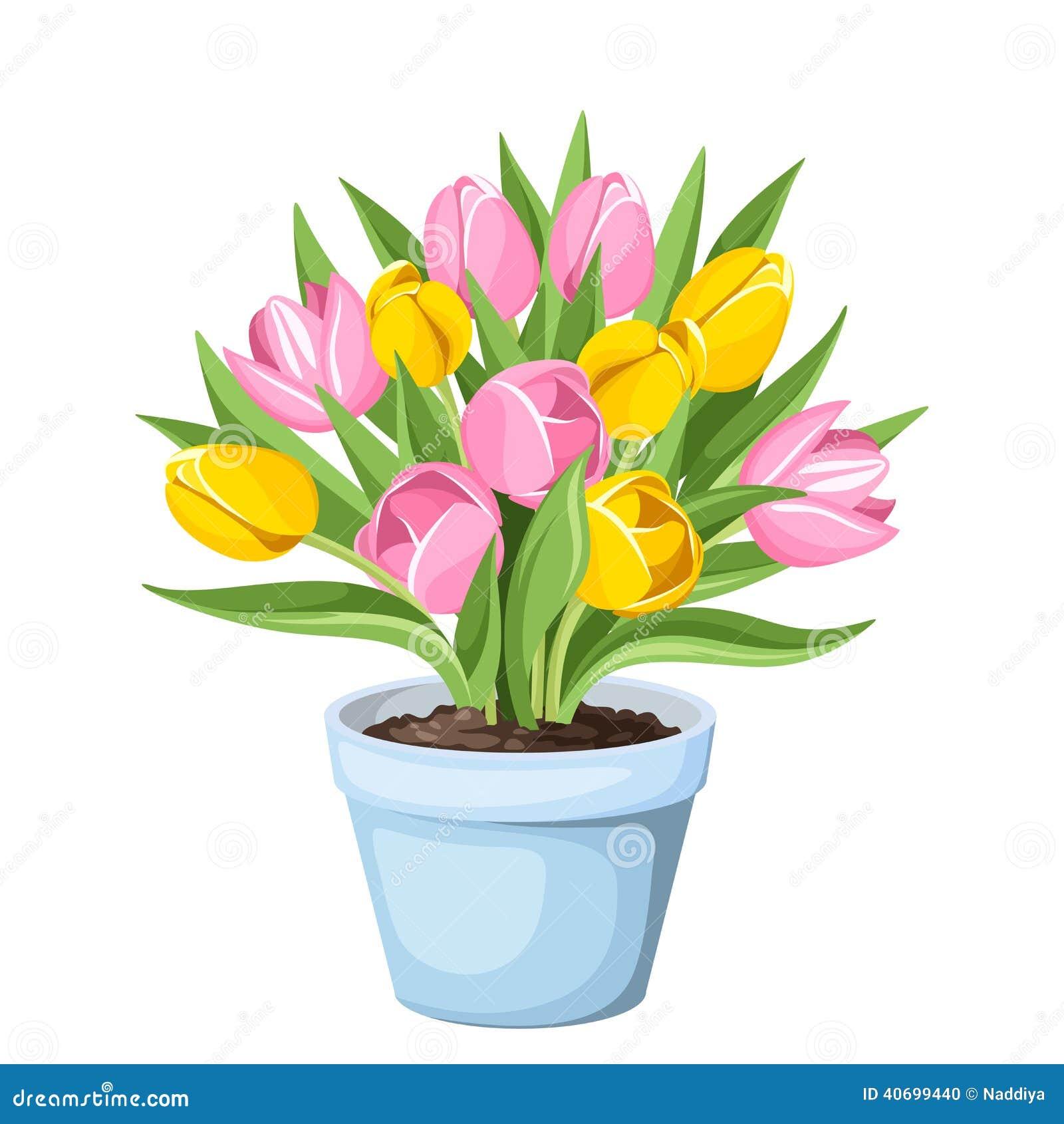 Tulip Flowers In A Pot. Vector Illustration. Stock Vector