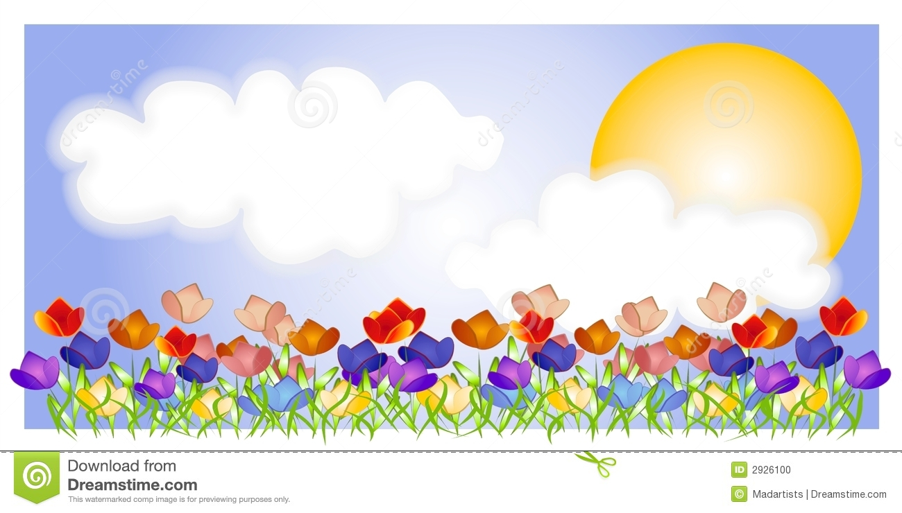 Tulip Garden Sky Sun Scene Stock Photo Image 2926100