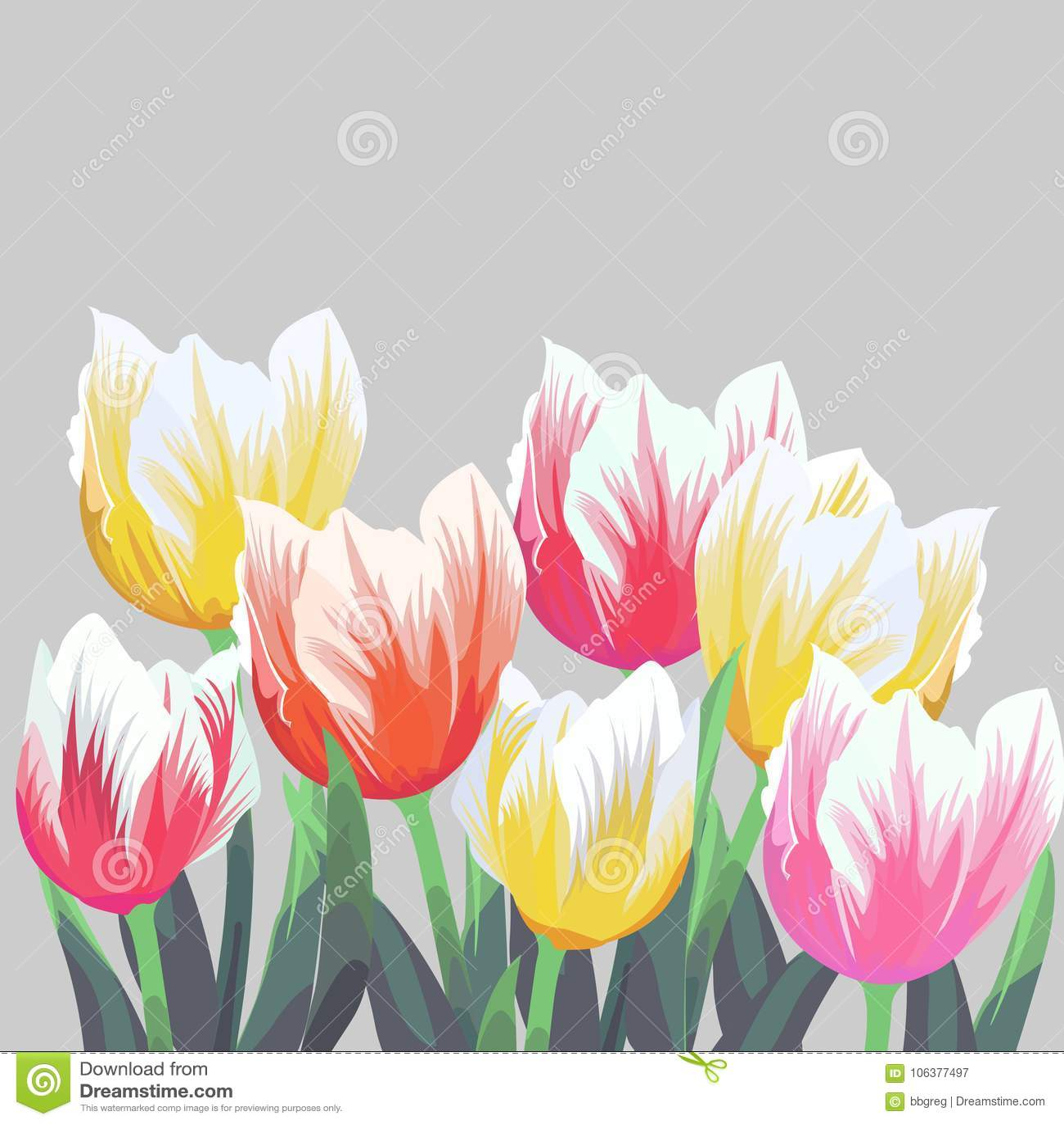 Tulipanes Tulipanes del vector del color aislados en fondo gris Flores en diversas formas para su diseño y saludos