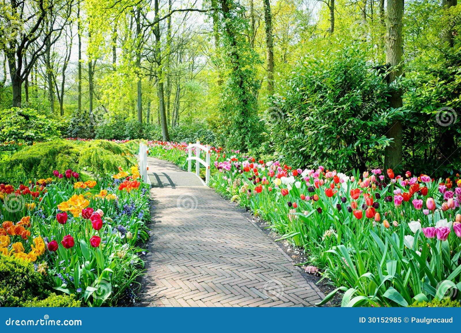 Tulipanes multicolores en los jardines de keukenhof imagen for Imagenes jardines