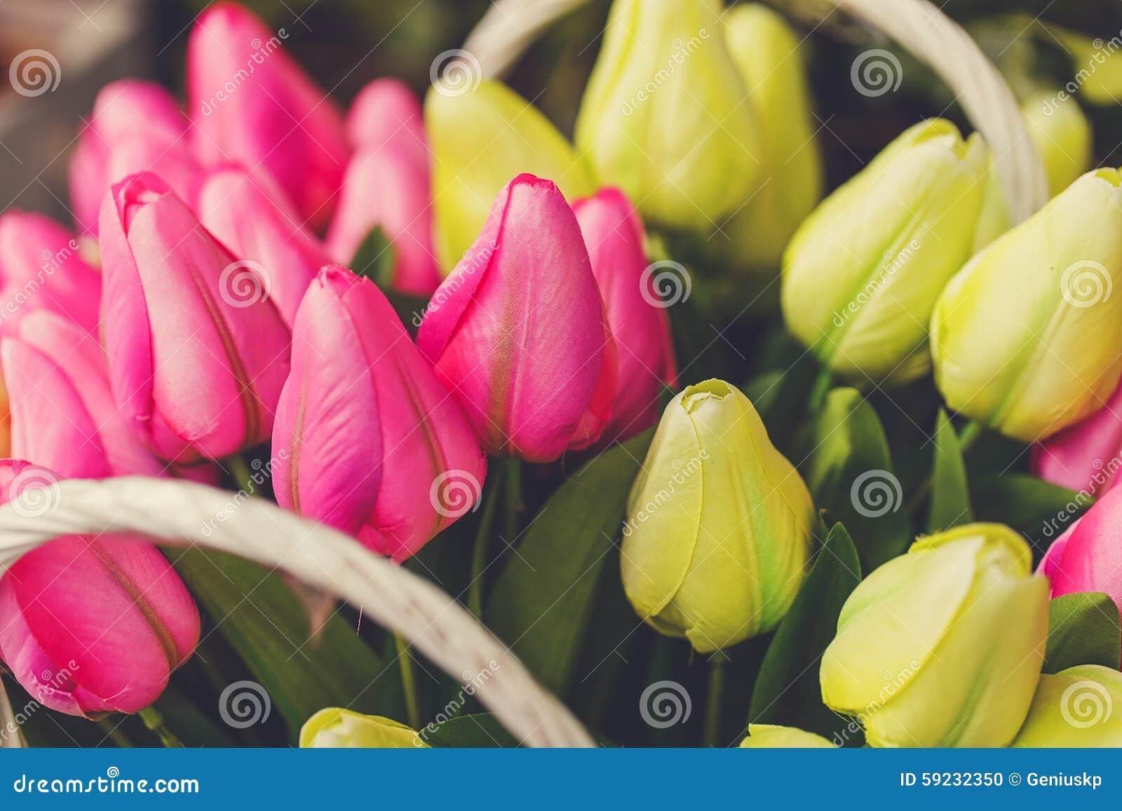 Download Tulipanes Rosados Y Amarillos Foto de archivo - Imagen de hermoso, verde: 59232350