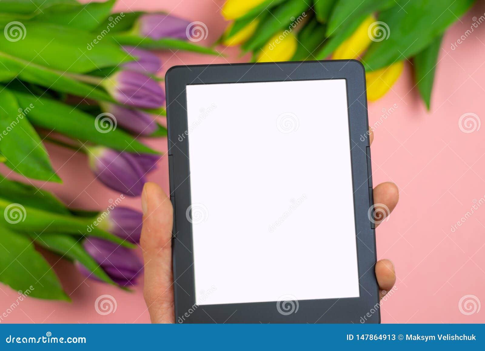 Tulipanes y tableta con la pantalla blanca de la maqueta en fondo rosado Tarjeta de felicitaci?n para Pascua o el d?a de las muje