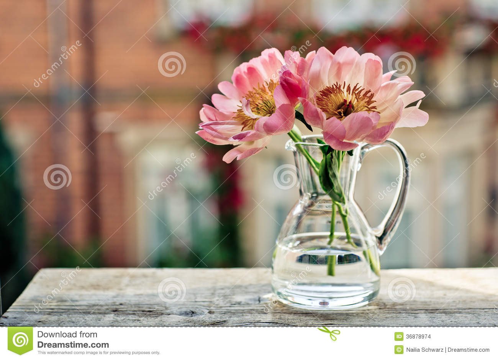 Download Tulipani fotografia stock. Immagine di latta, finestra - 36878974