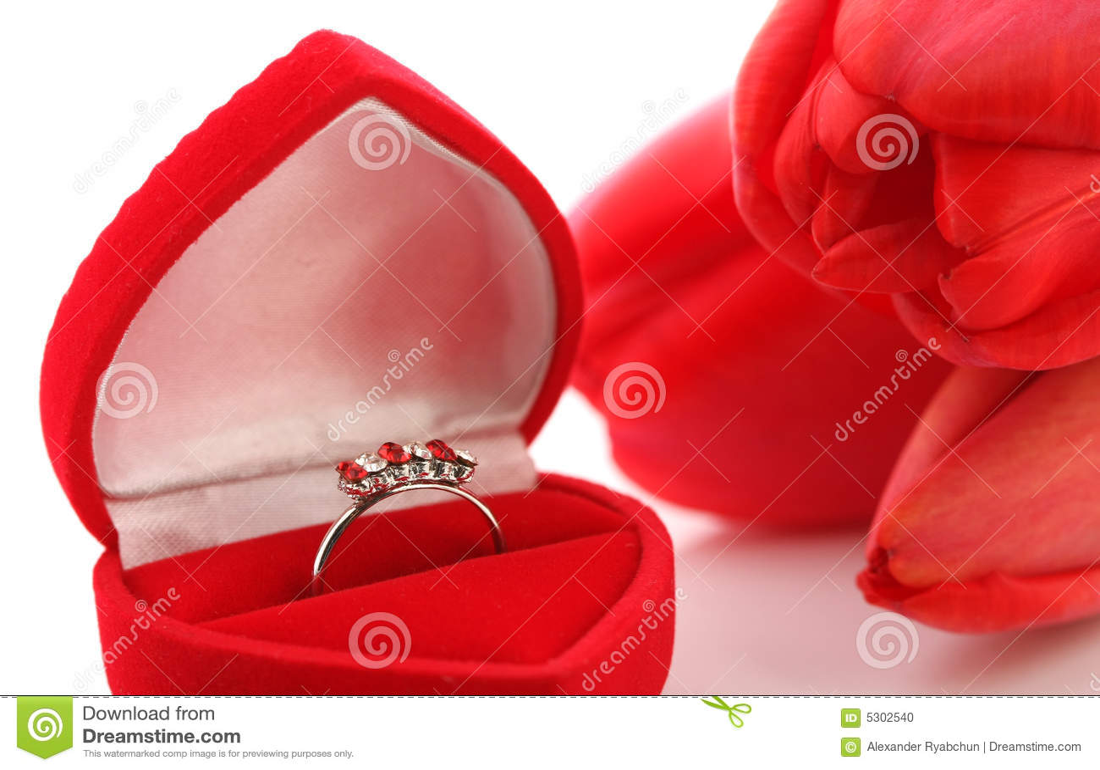 Download Tulipani E Contenitore Di Monili Rossi Con L'anello Fotografia Stock - Immagine di monili, rosso: 5302540