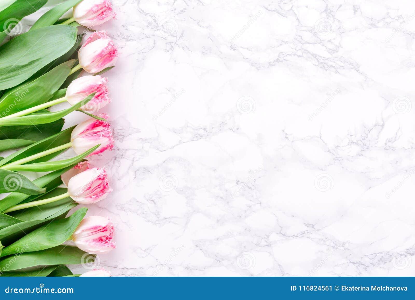 Tulipani Rosa Su Fondo Di Marmo Bianco Primavera E Celebrazione C