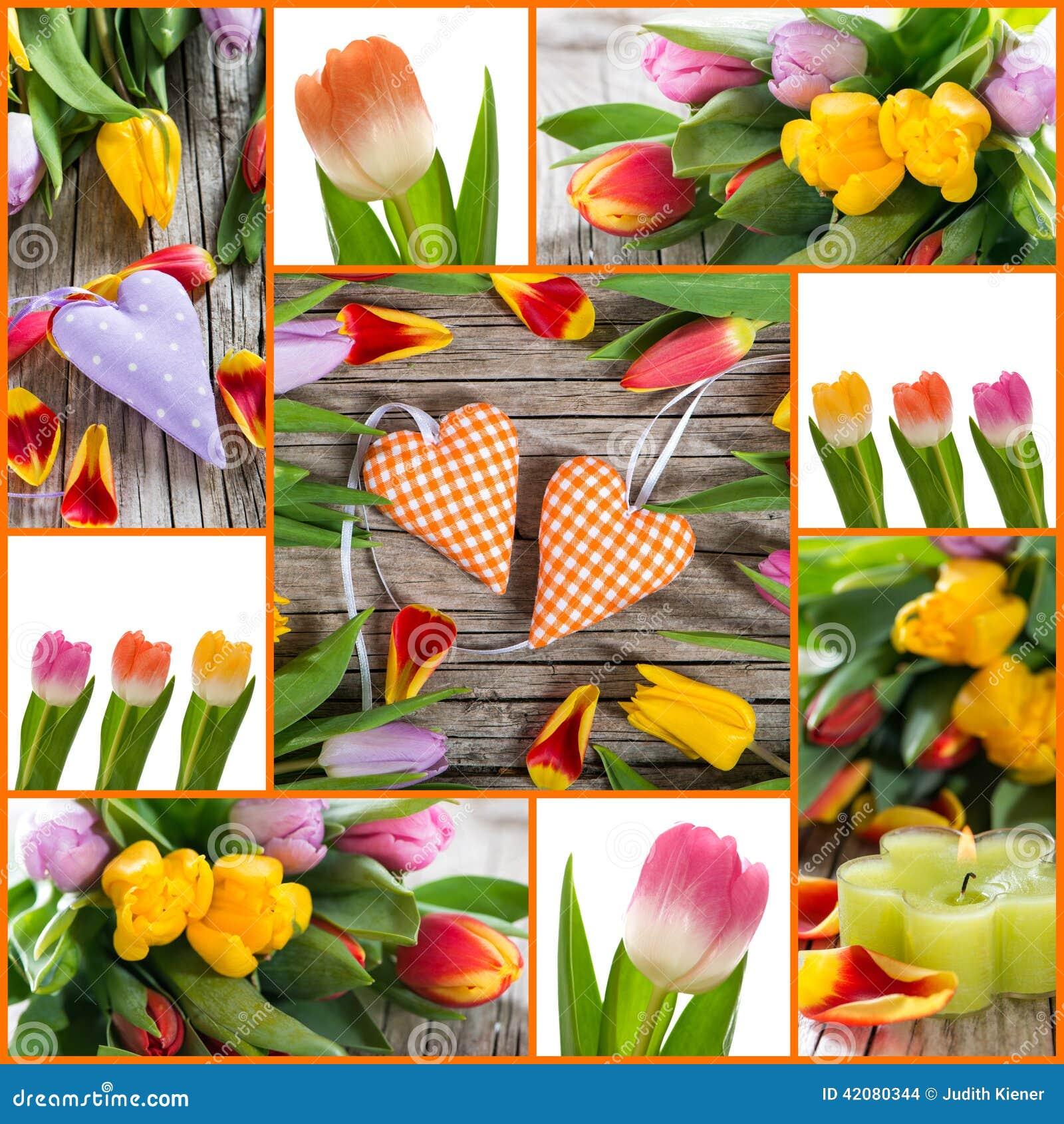 Tulipany i serce kolaż