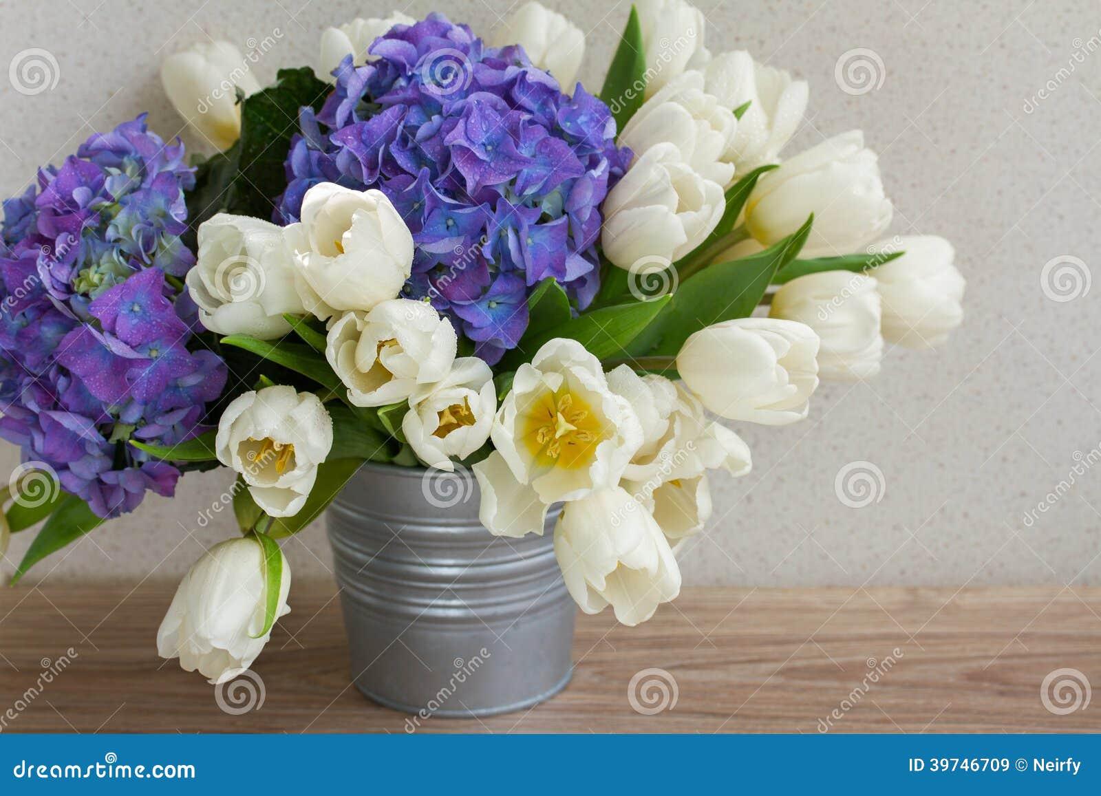 tulipes blanches et fleurs bleues de hortensia image stock image du fleur jardin 39746709. Black Bedroom Furniture Sets. Home Design Ideas