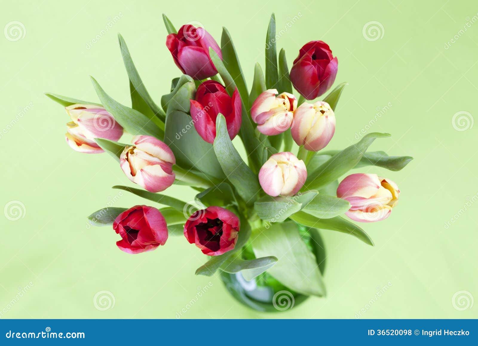 Tulipes rouges et jaunes dans un vase