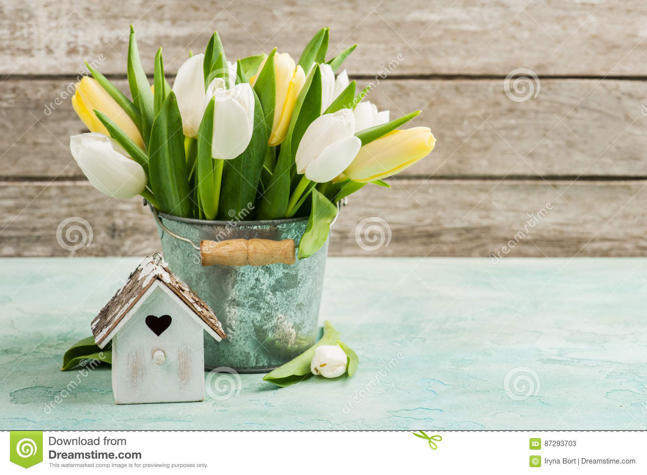 Tulips, bird house on concrete background