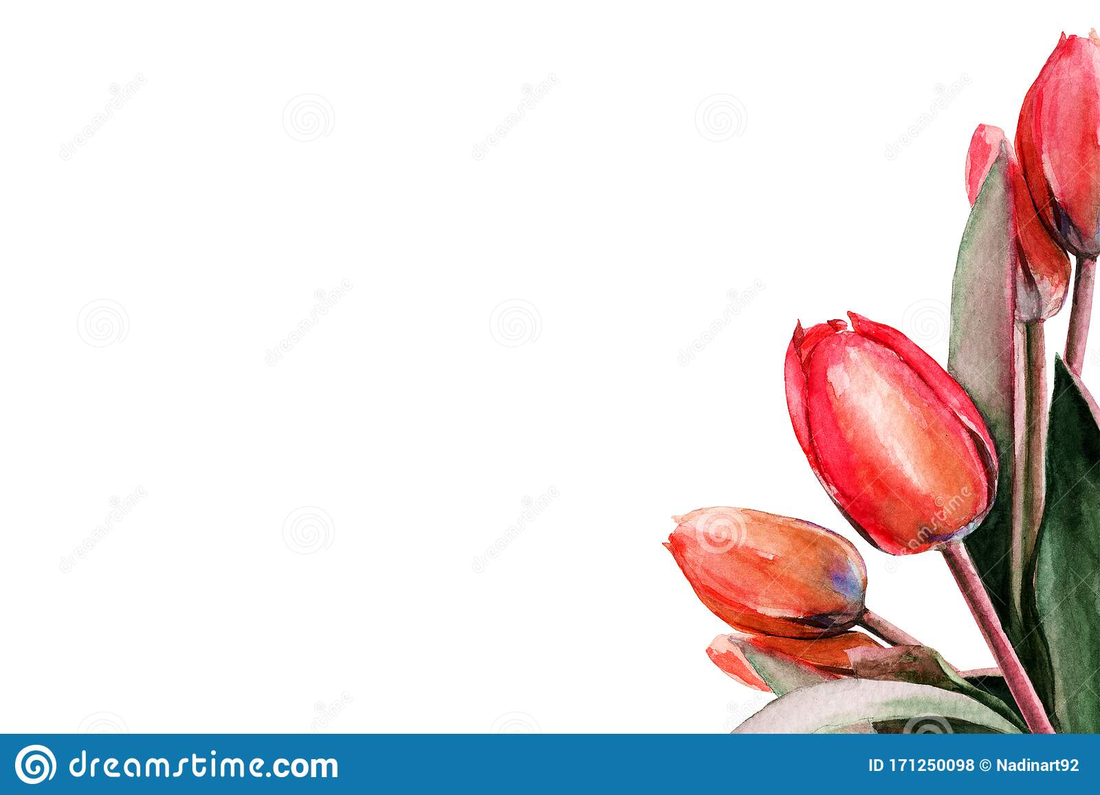 127 Art Clip Flower Stem Photos Free Royalty Free Stock Photos From Dreamstime