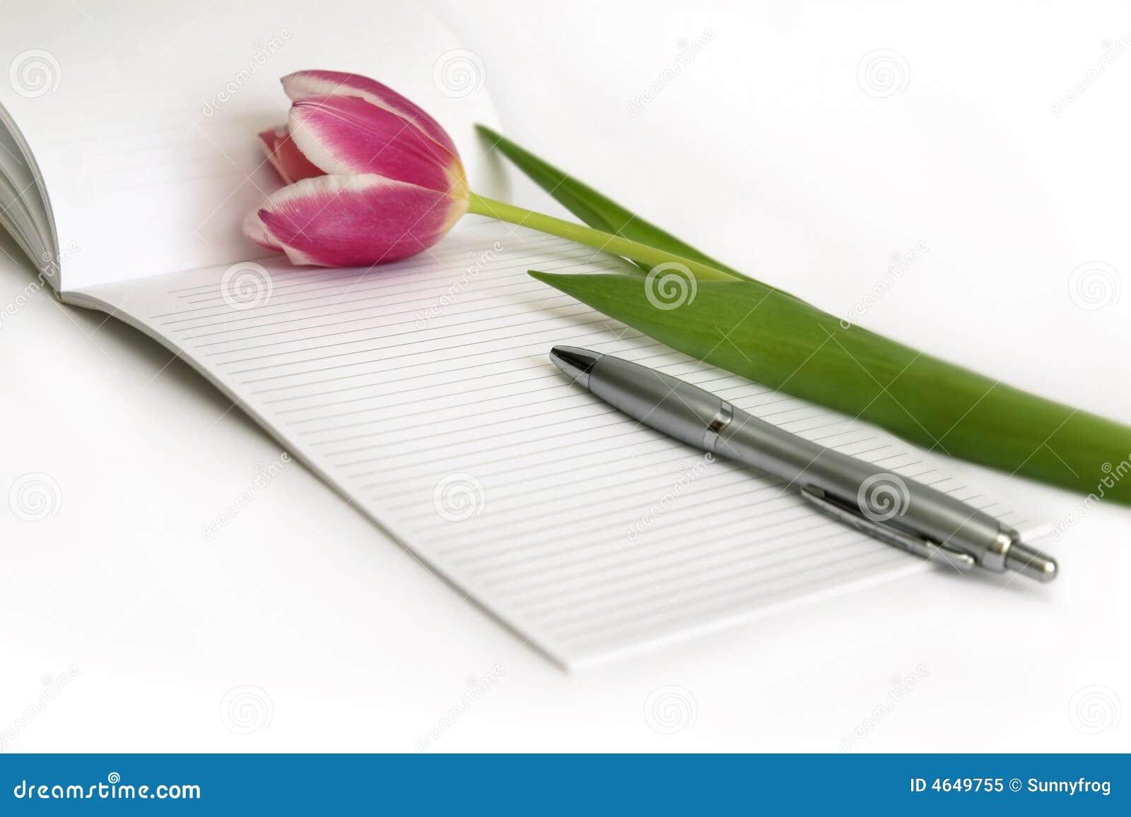 Tulips cor-de-rosa, pena, nota