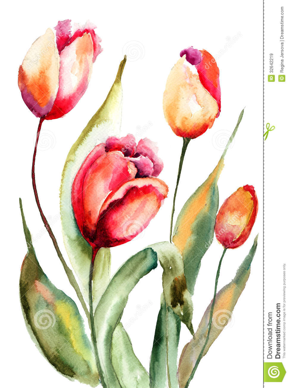 Tulips Flowers Royalty Free Stock Images - Image: 32642219