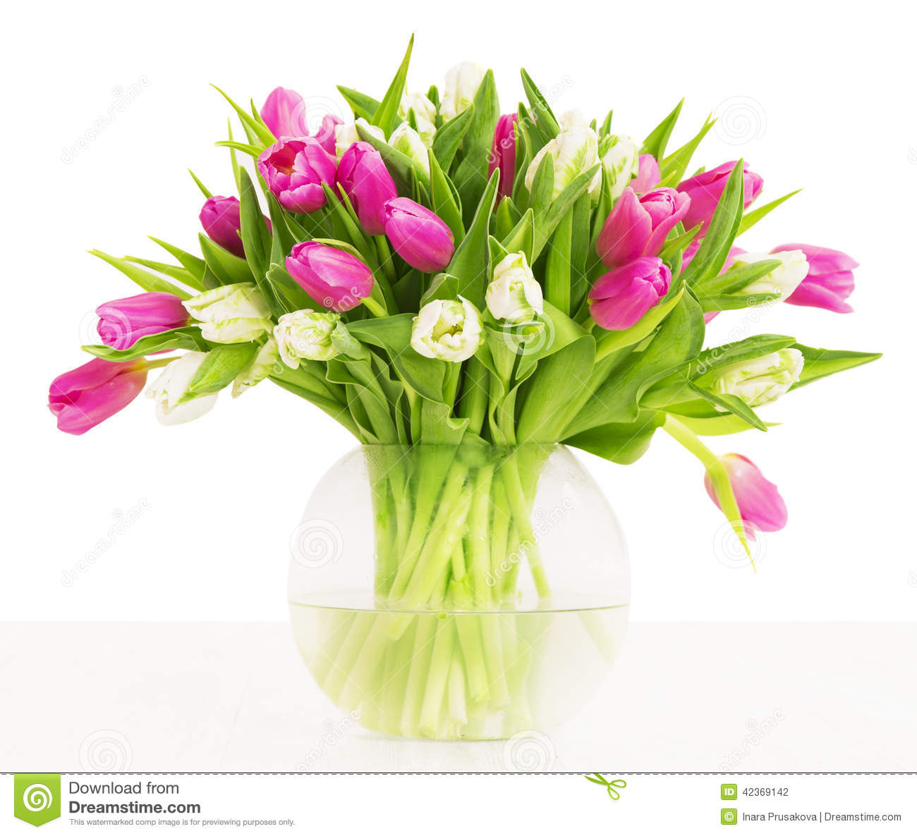 Tulips Flowers Bouquet In Vase White Background Stock