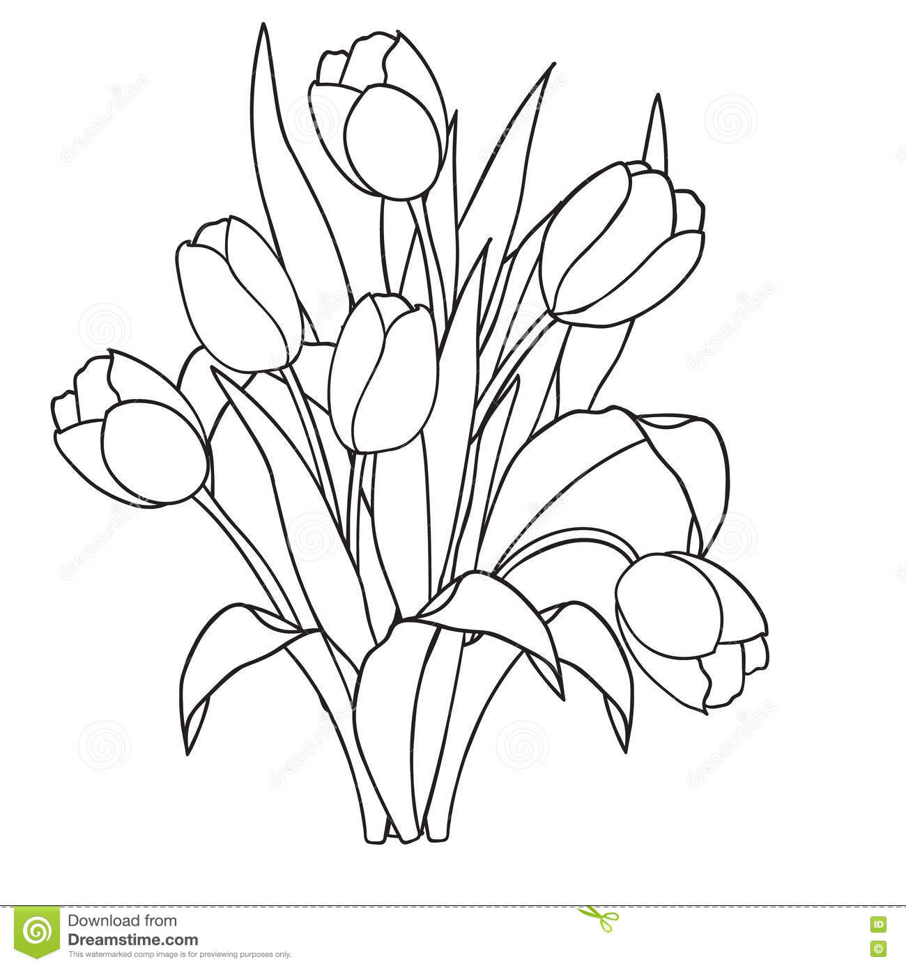 Tulips Flowers Ornamental Black And White Coloring